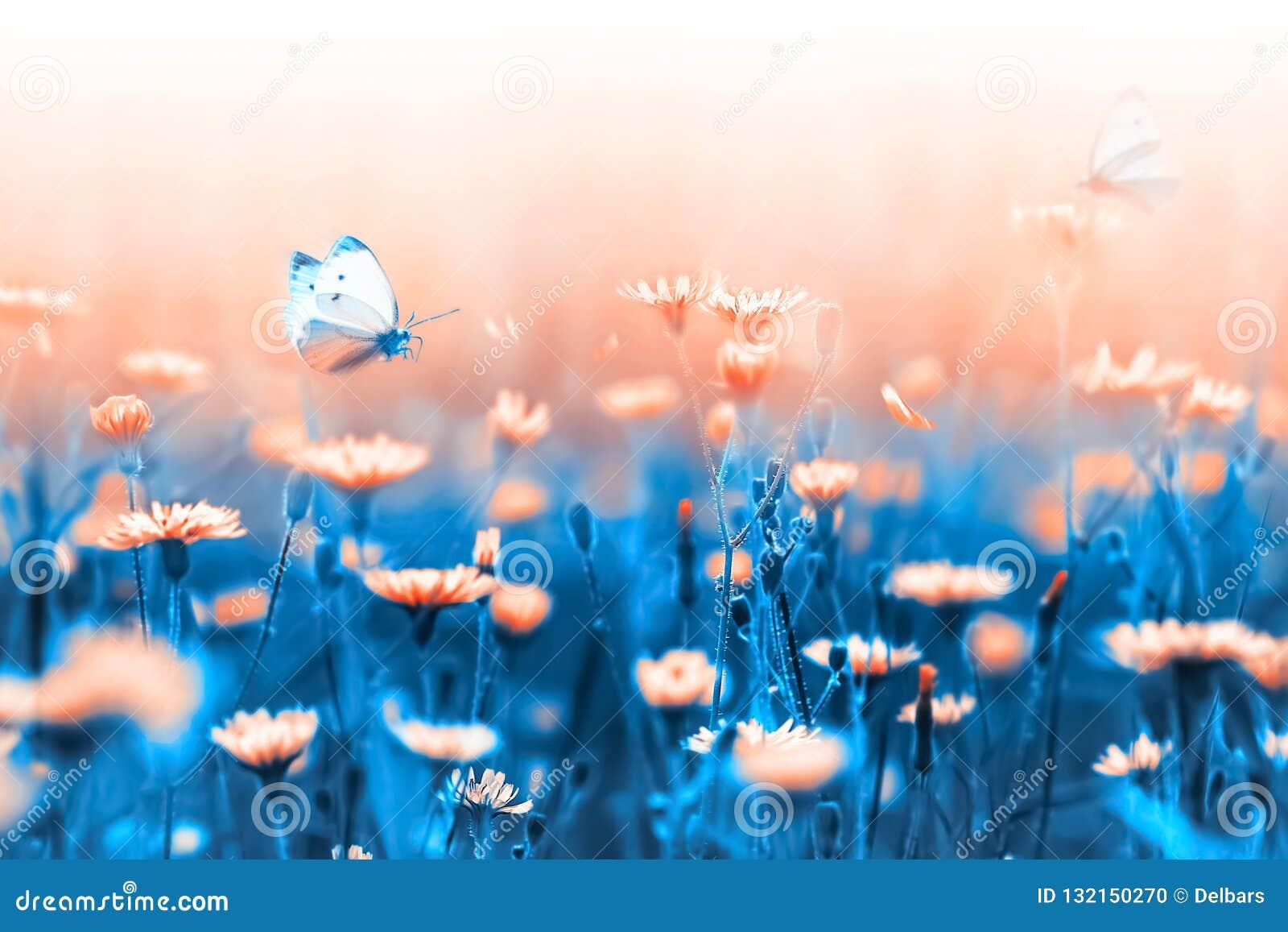 Fondo del resorte Flores y mariposa anaranjadas en un fondo de hojas y de troncos azules Imagen macra natural artística