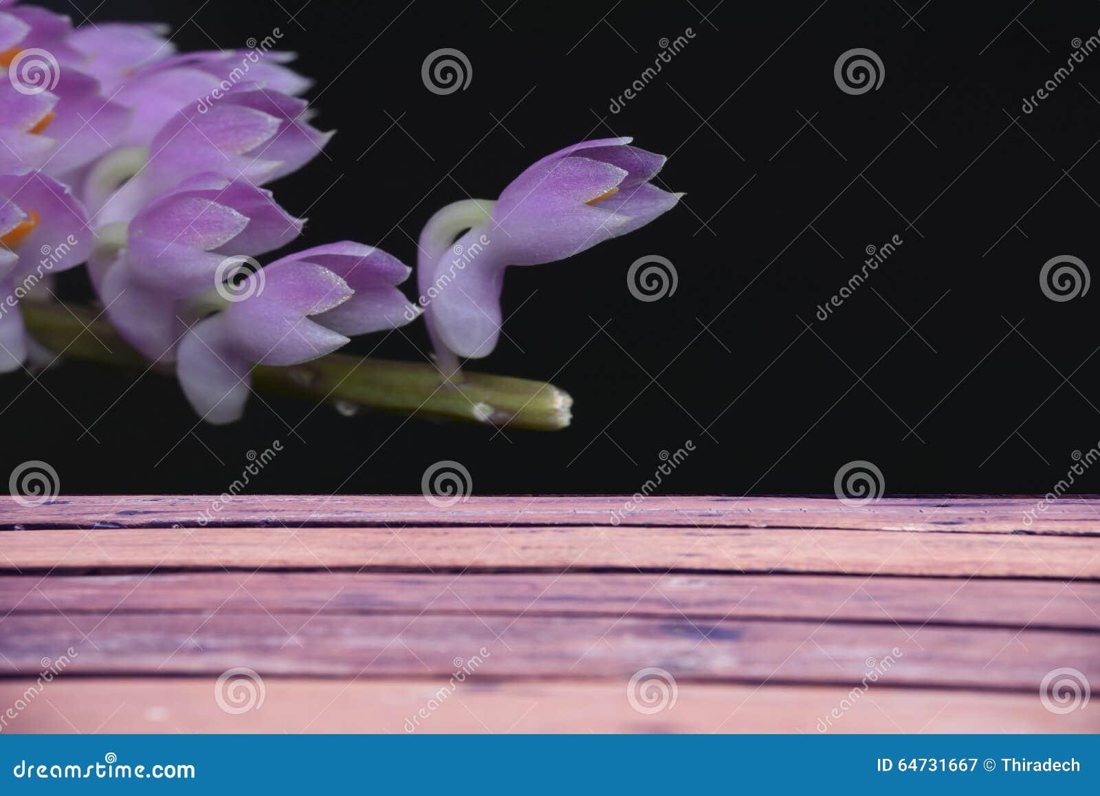 Fondo del tablón con las flores negras