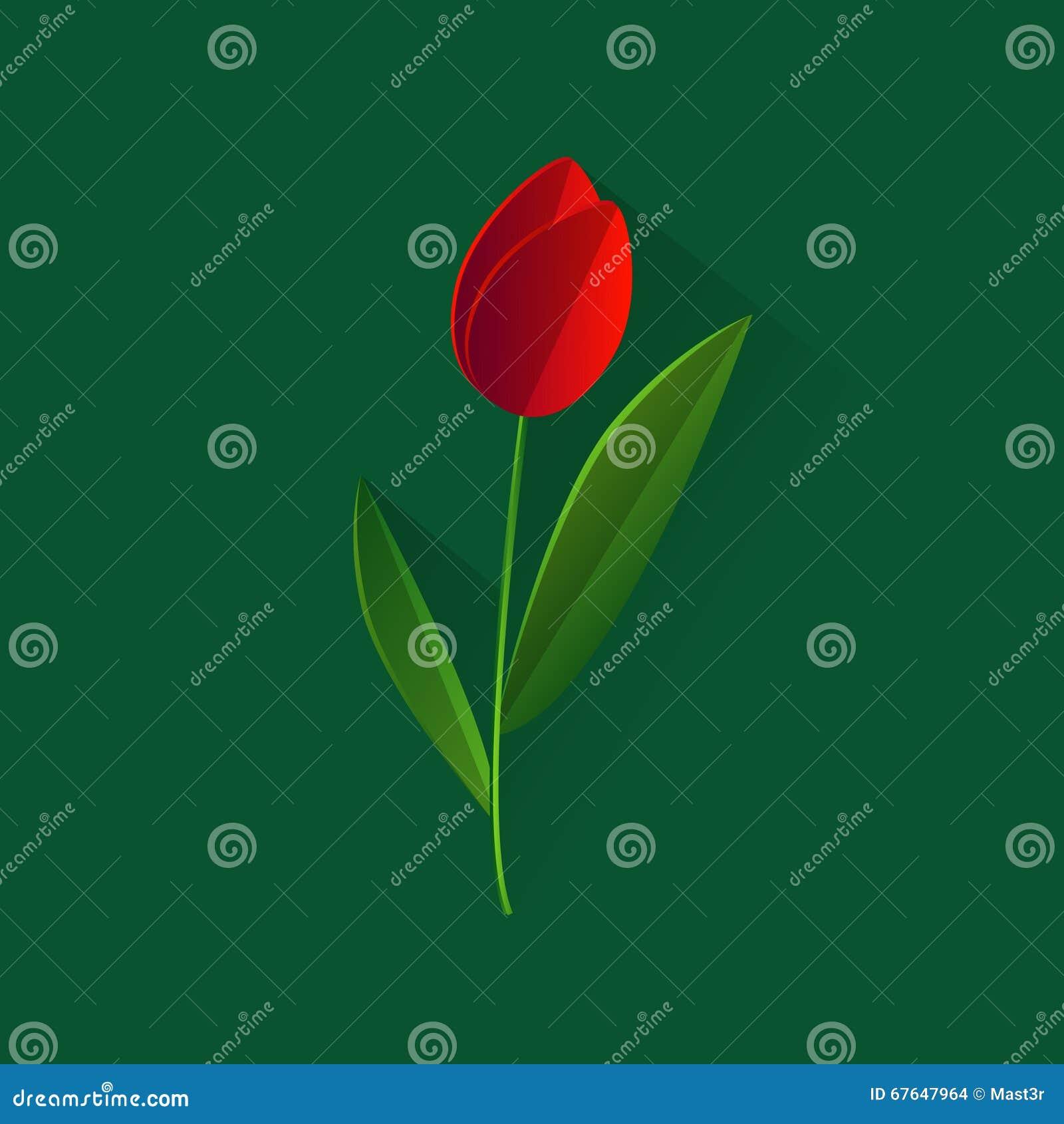 Fondo del verde de Tulip Flower Spring Holiday Concept