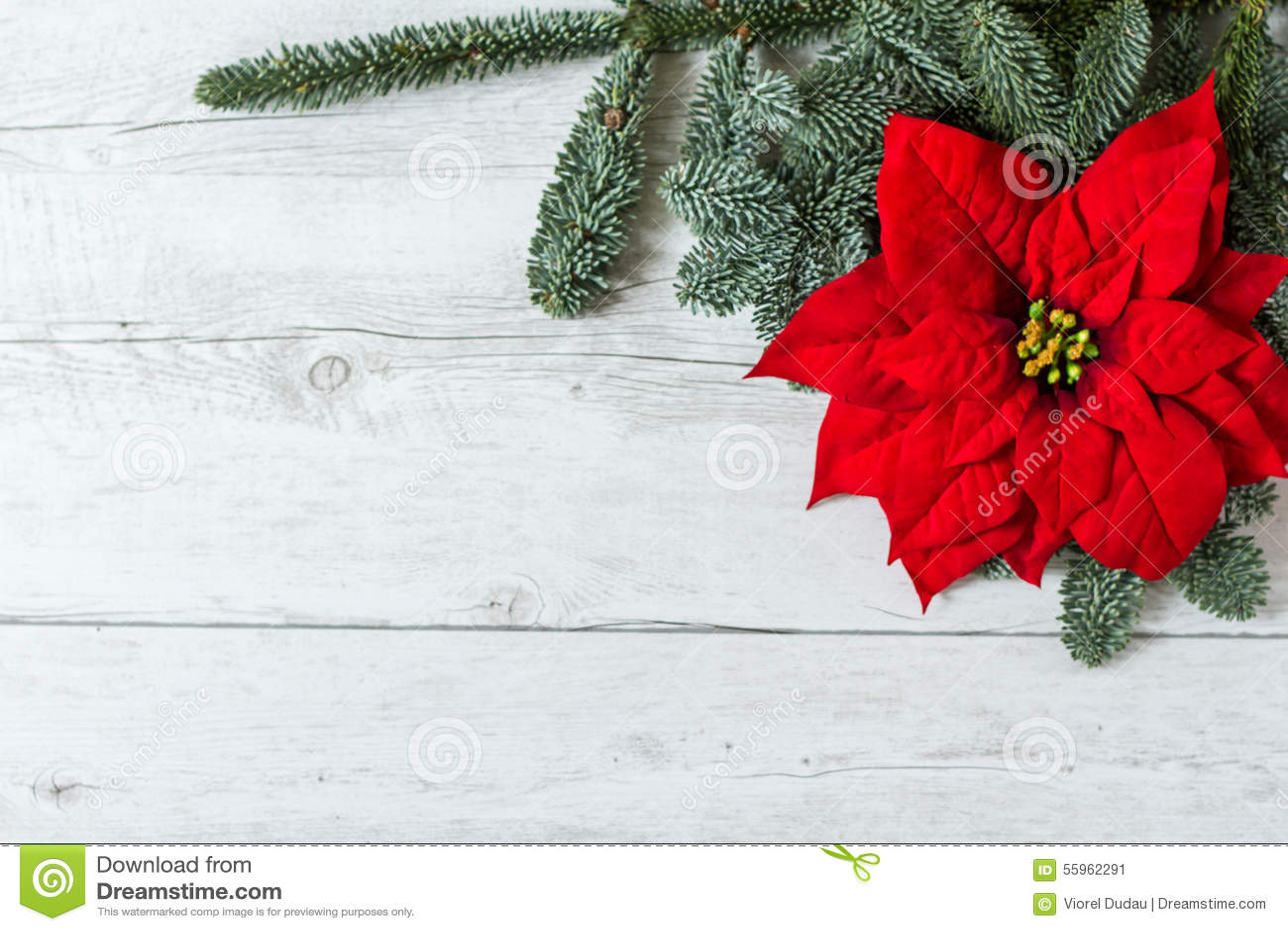 Fondo della cartolina d auguri di Natale