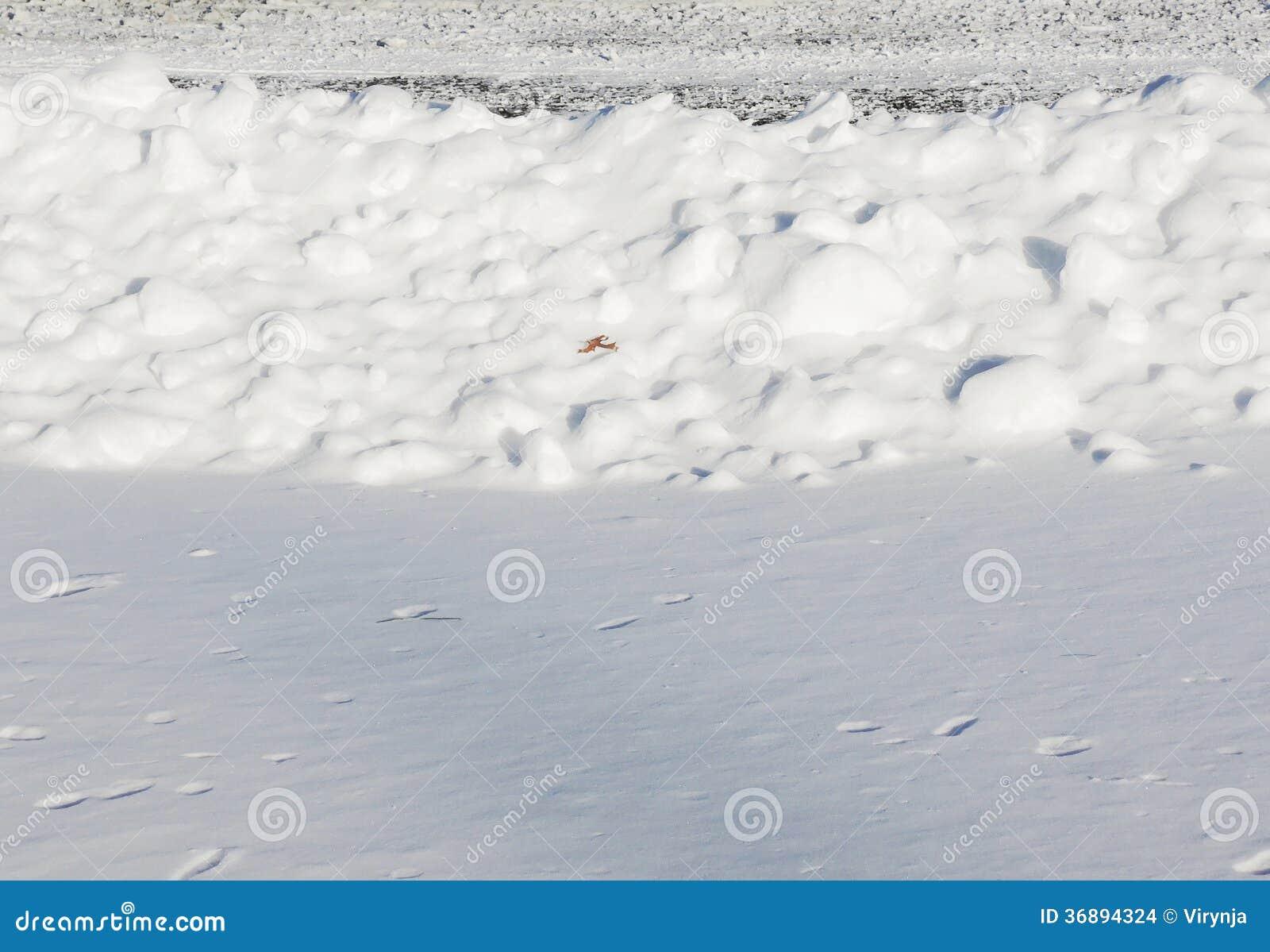 Download Fondo della neve fotografia stock. Immagine di neve, modello - 36894324