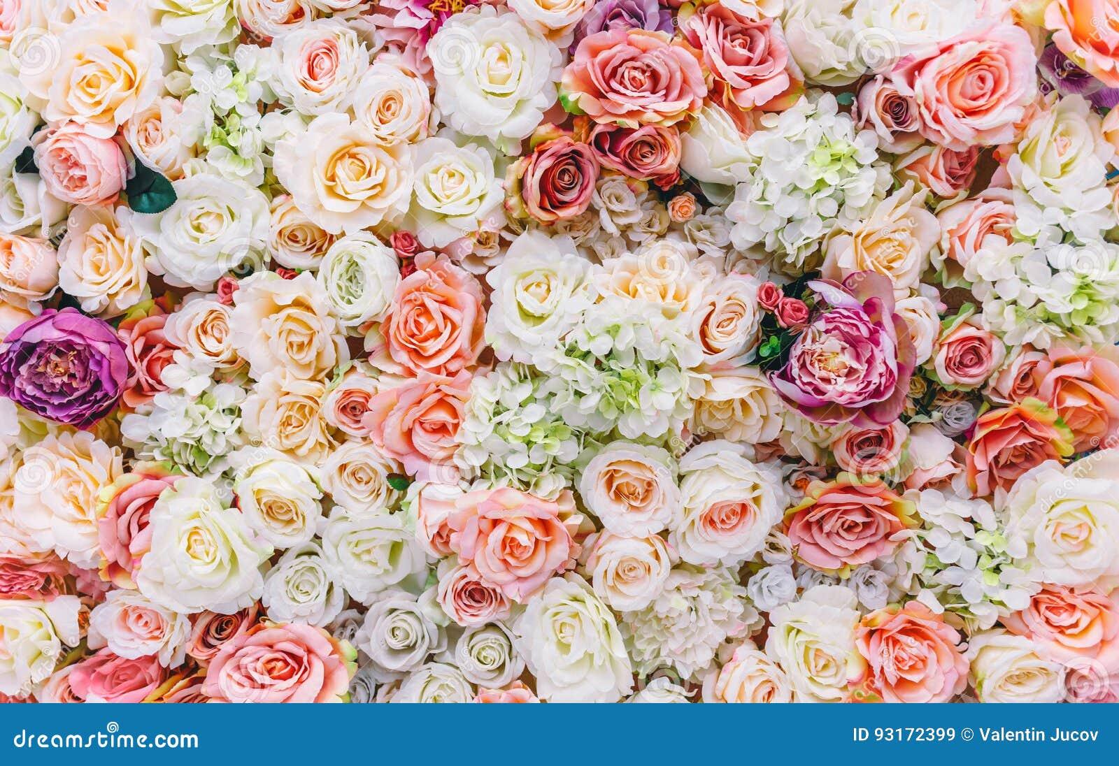 Fondo della parete dei fiori con lo stupore delle rose rosse e bianche, decorazione di nozze, fatta a mano