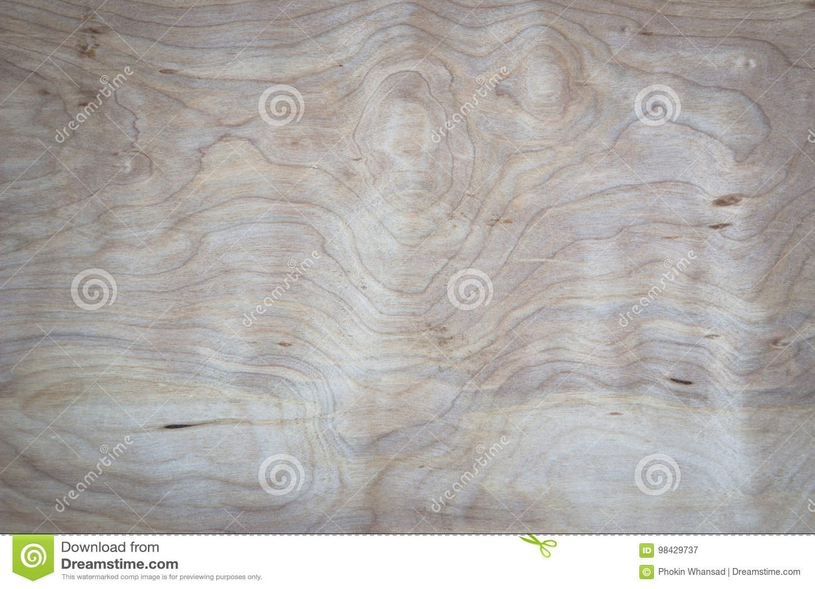 Legno Naturale Bianco : Fondo di legno bianco naturale reale di struttura della parete