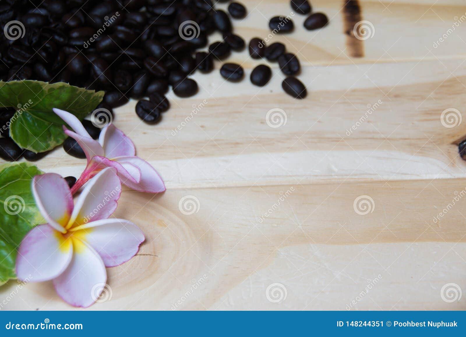 Fondo di legno decorato con i chicchi di caffè, i fiori del frangipane e le foglie