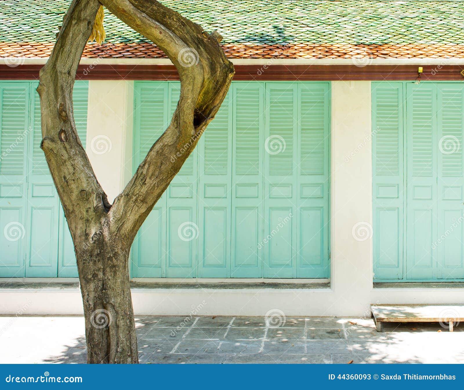 Fondo di legno verde delle porte