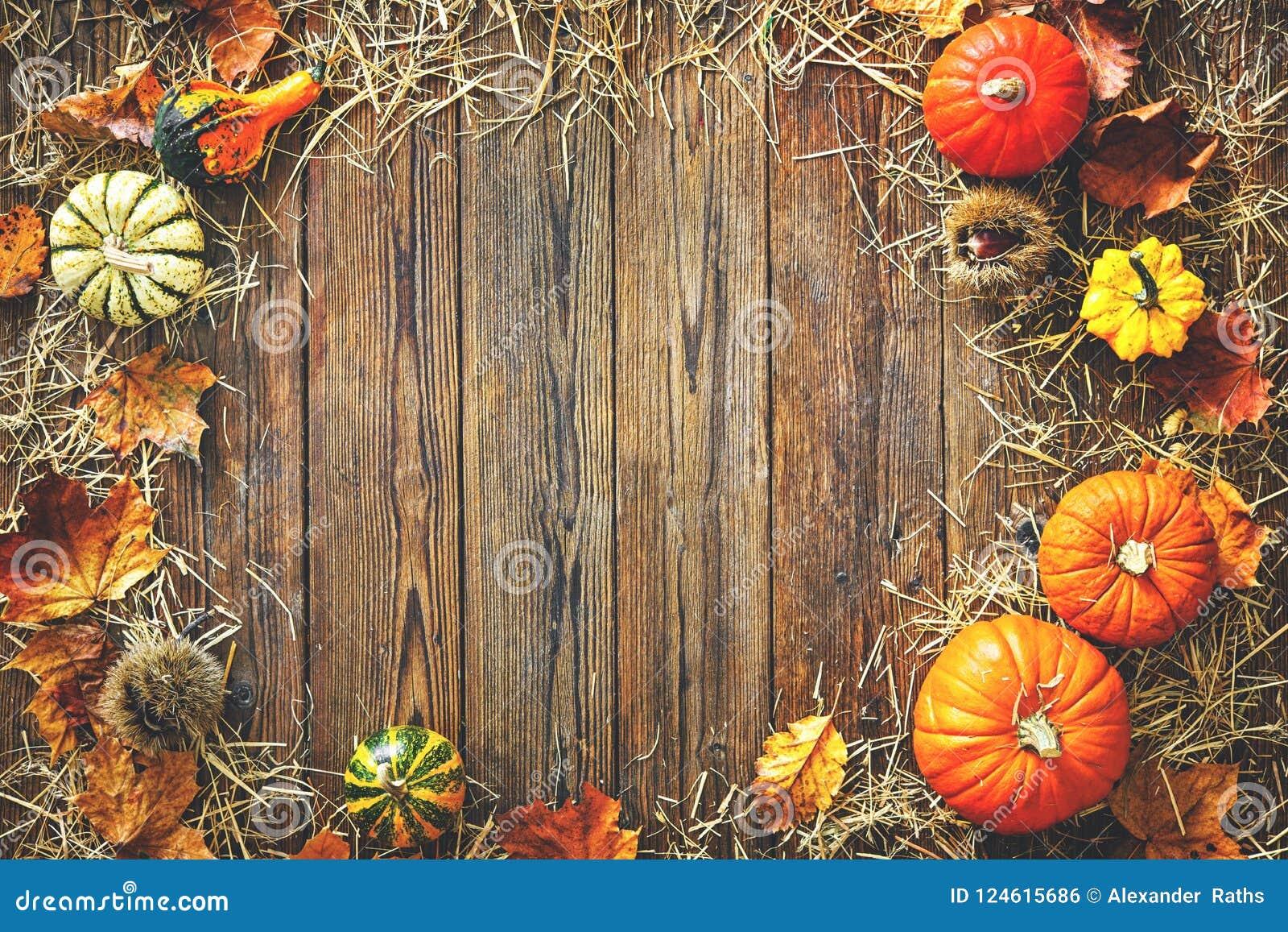 Fondo di ringraziamento o del raccolto con le zucche e la paglia
