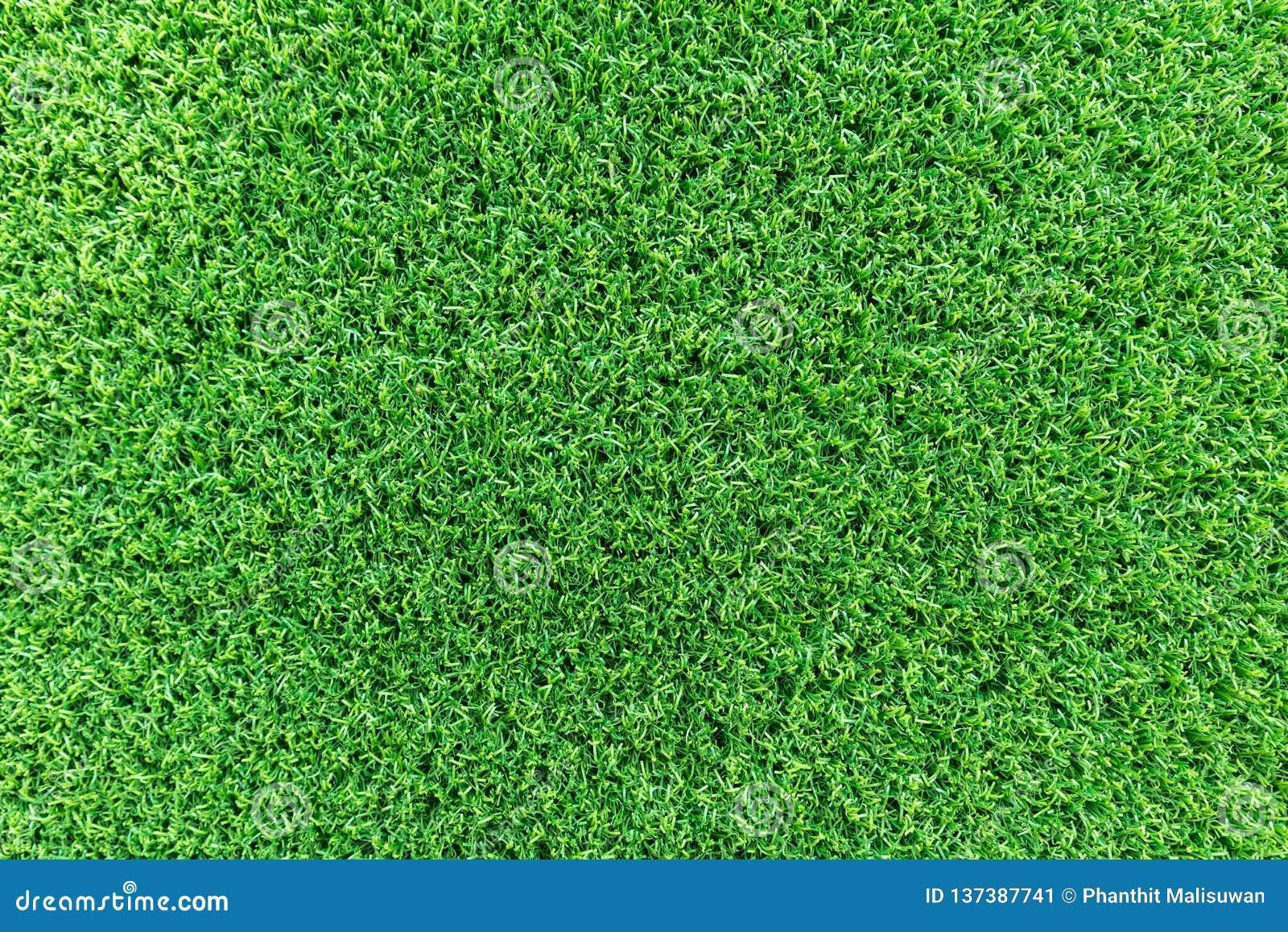 Fondo di struttura dell erba per progettazione di massima del campo da golf, del campo di calcio o di sport Erba verde artificial