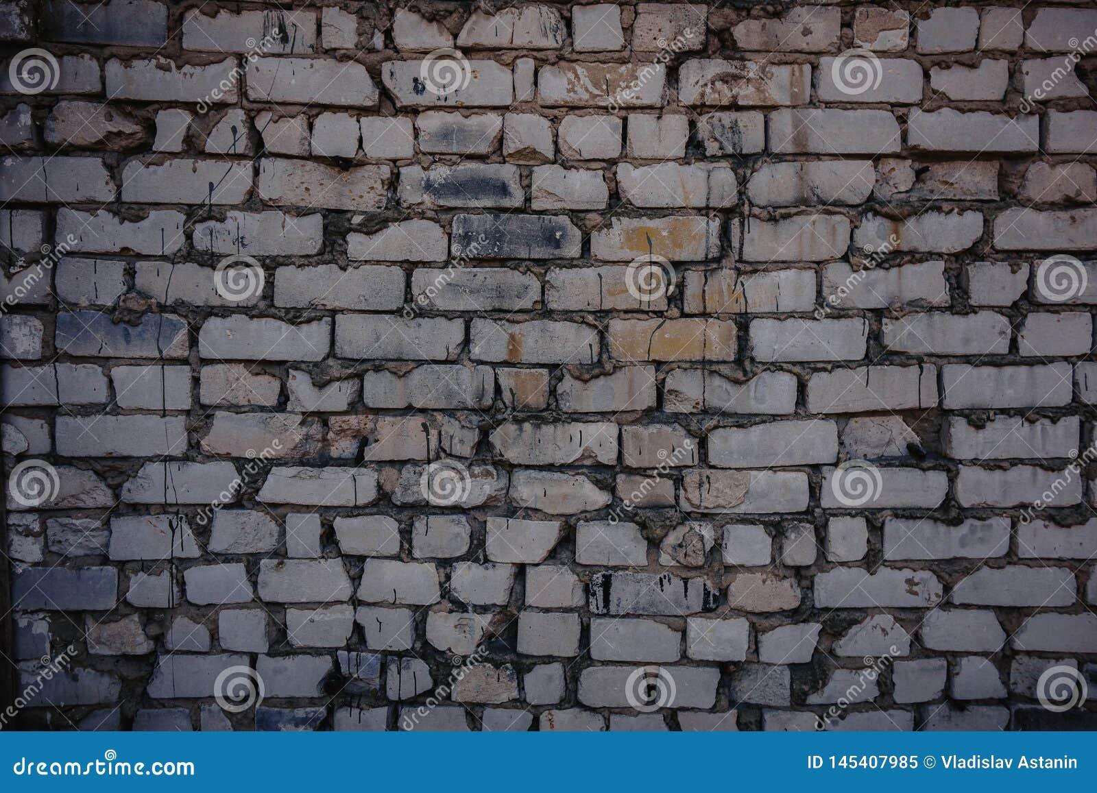 Fondo di vecchio muro di mattoni sporco d annata con il gesso della sbucciatura, struttura