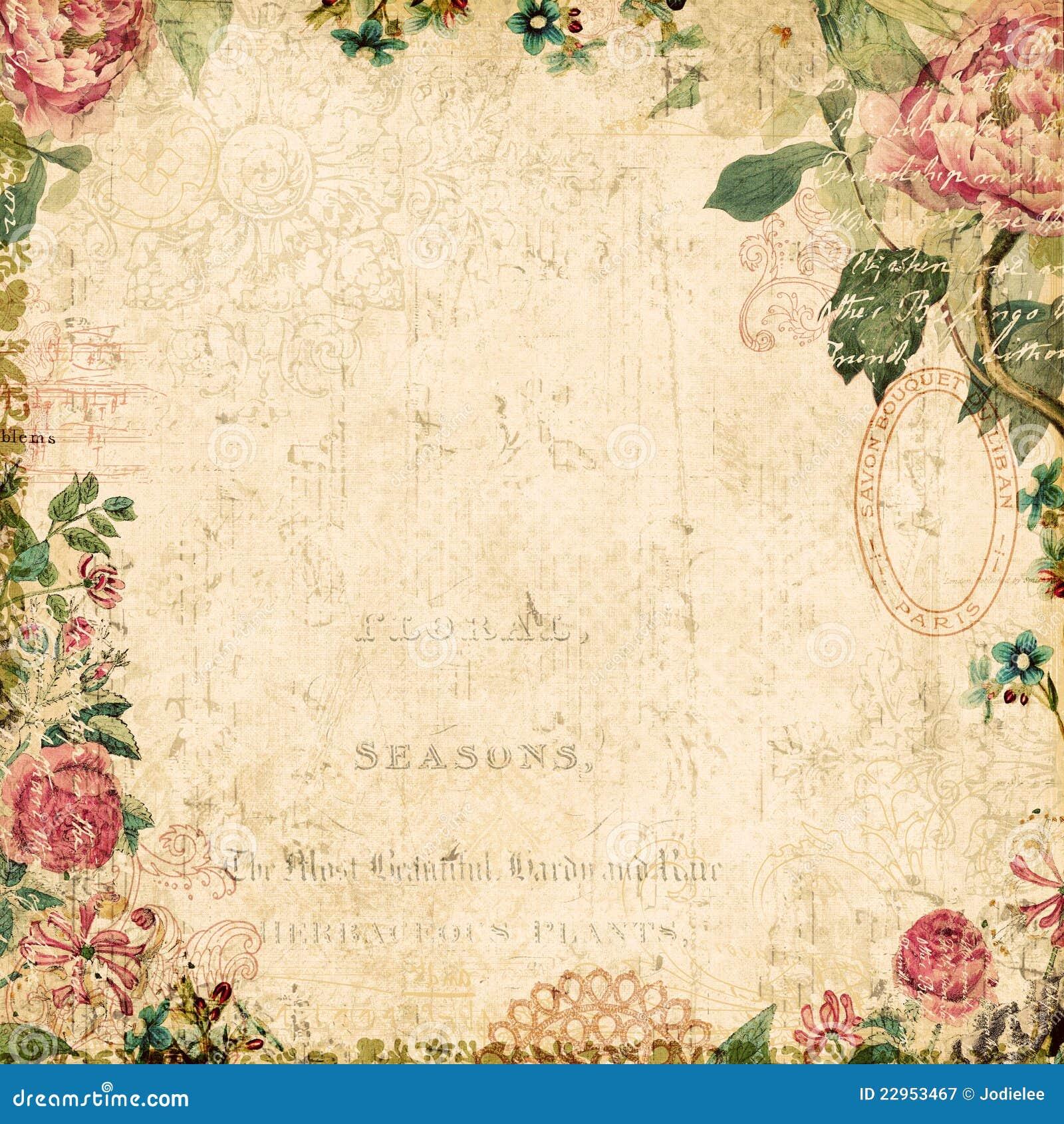 Fondo enmarcado floral botánico del estilo de la vendimia