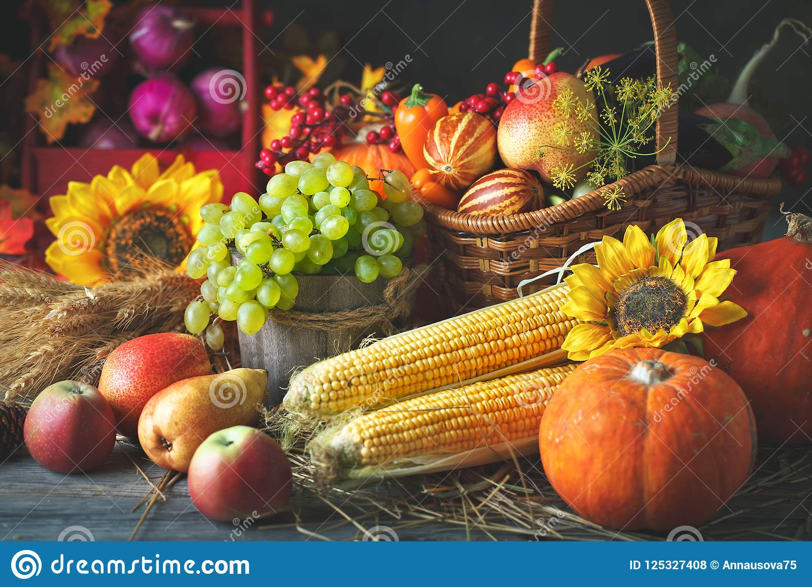 Fondo feliz del día de la acción de gracias, tabla de madera adornada con las calabazas, maíz, frutas y hojas de otoño cosecha