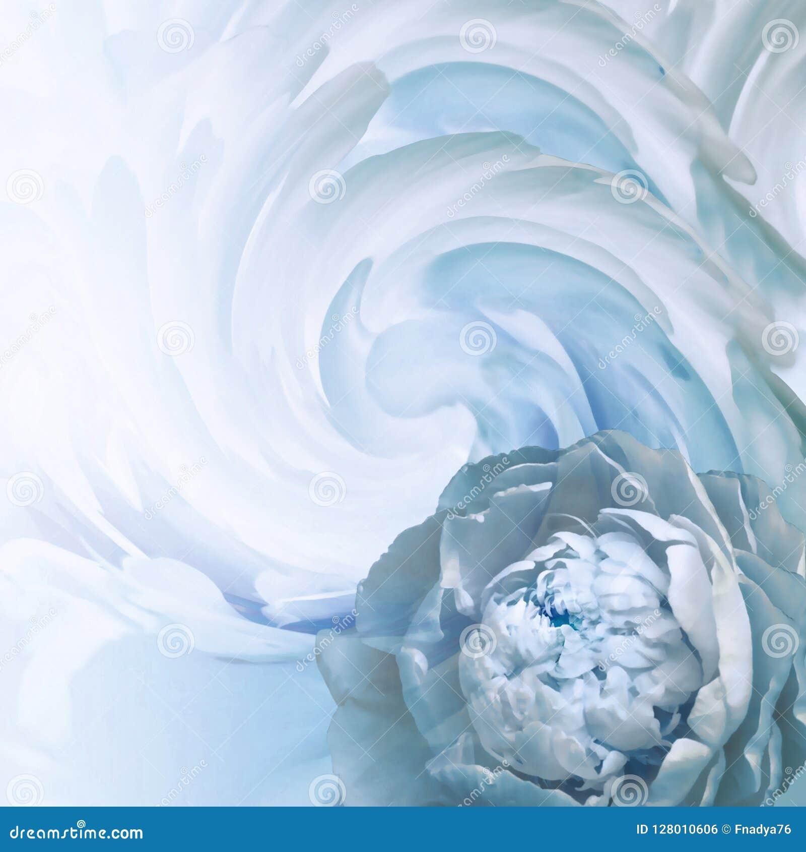 Fondo floral abstracto de la azul-turquesa Una flor de una peonía azul clara en un fondo de pétalos torcidos Tarjeta de felicitac