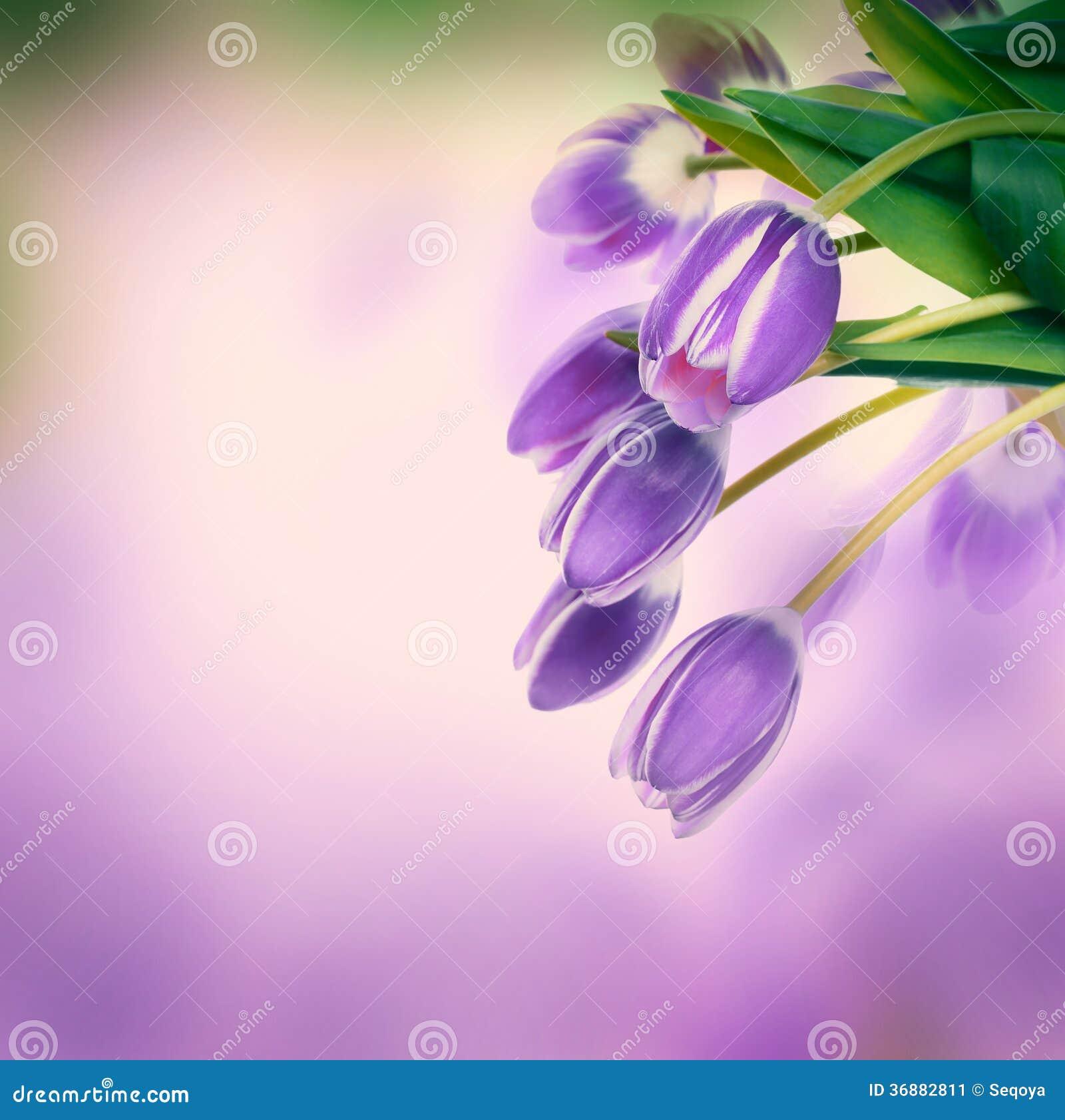 Download Fondo floreale. immagine stock. Immagine di background - 36882811