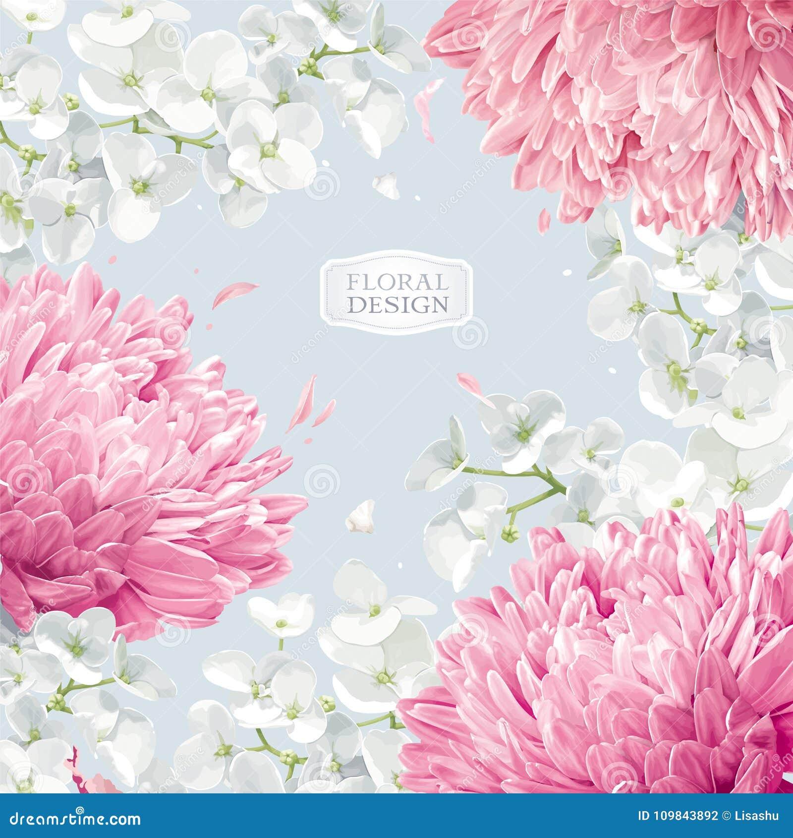 Fondo floreale di vettore del fiore di Apple e dei crisantemi
