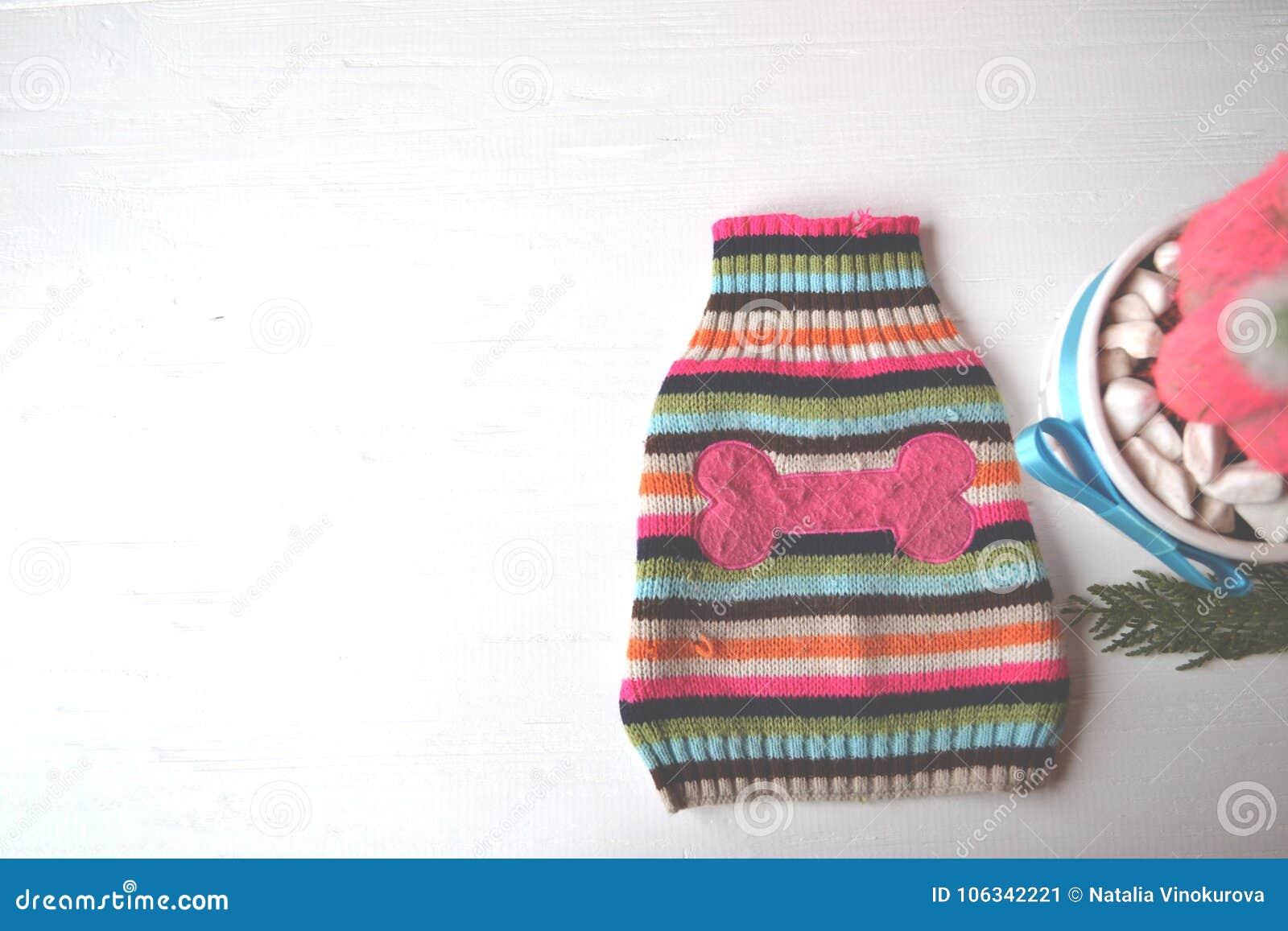 Fondo Lindo Con El Suéter Para El Perro Tienda Del Parque Zoológico ...