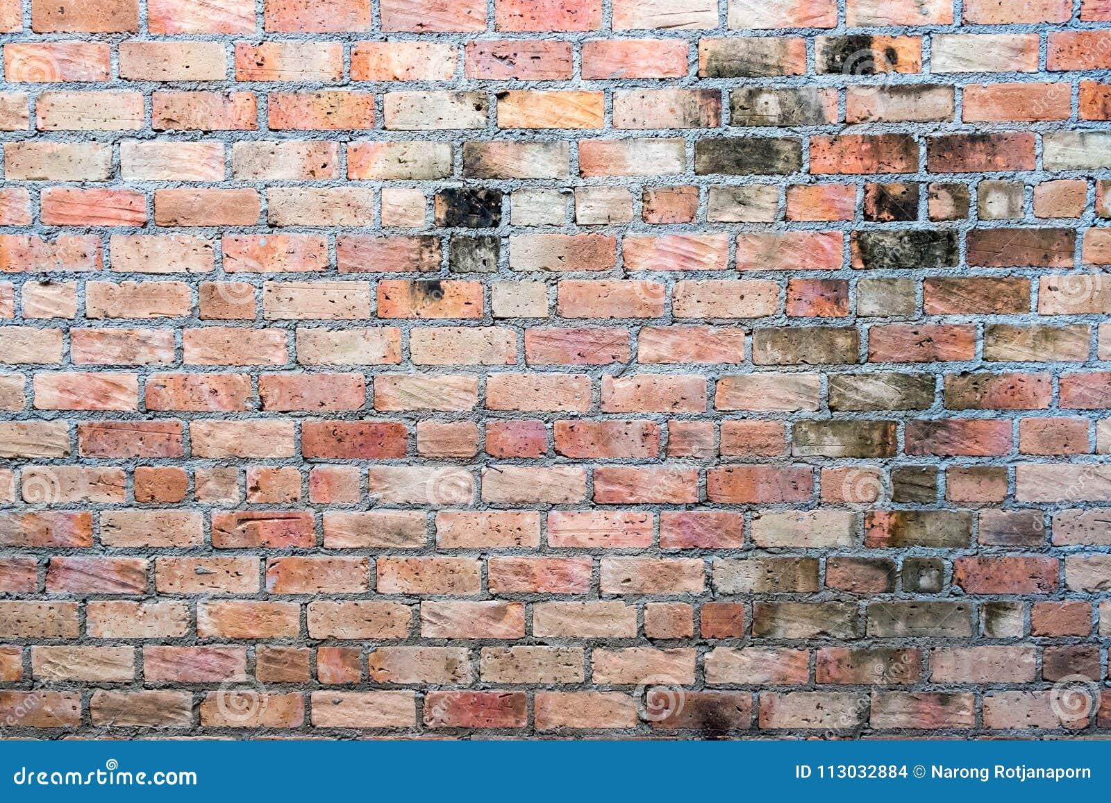 Fondo marrón de la pared de ladrillo