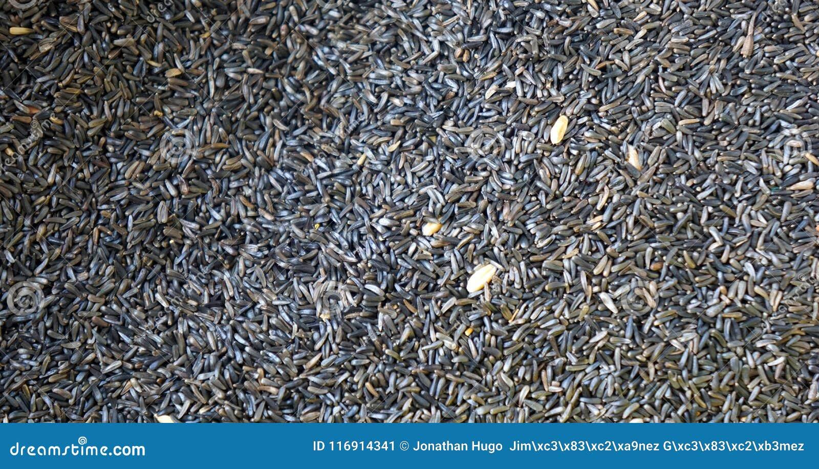 Fondo minúsculo negro de la textura de las semillas