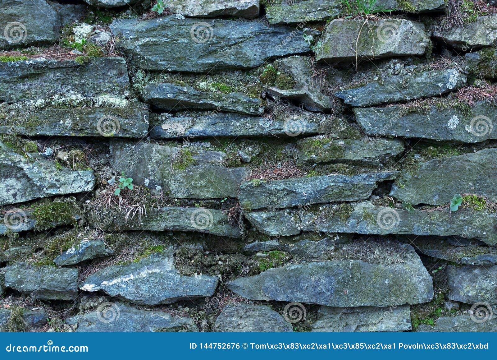 Fondo o textura de una pared de piedra seca cubierta con los liquenes