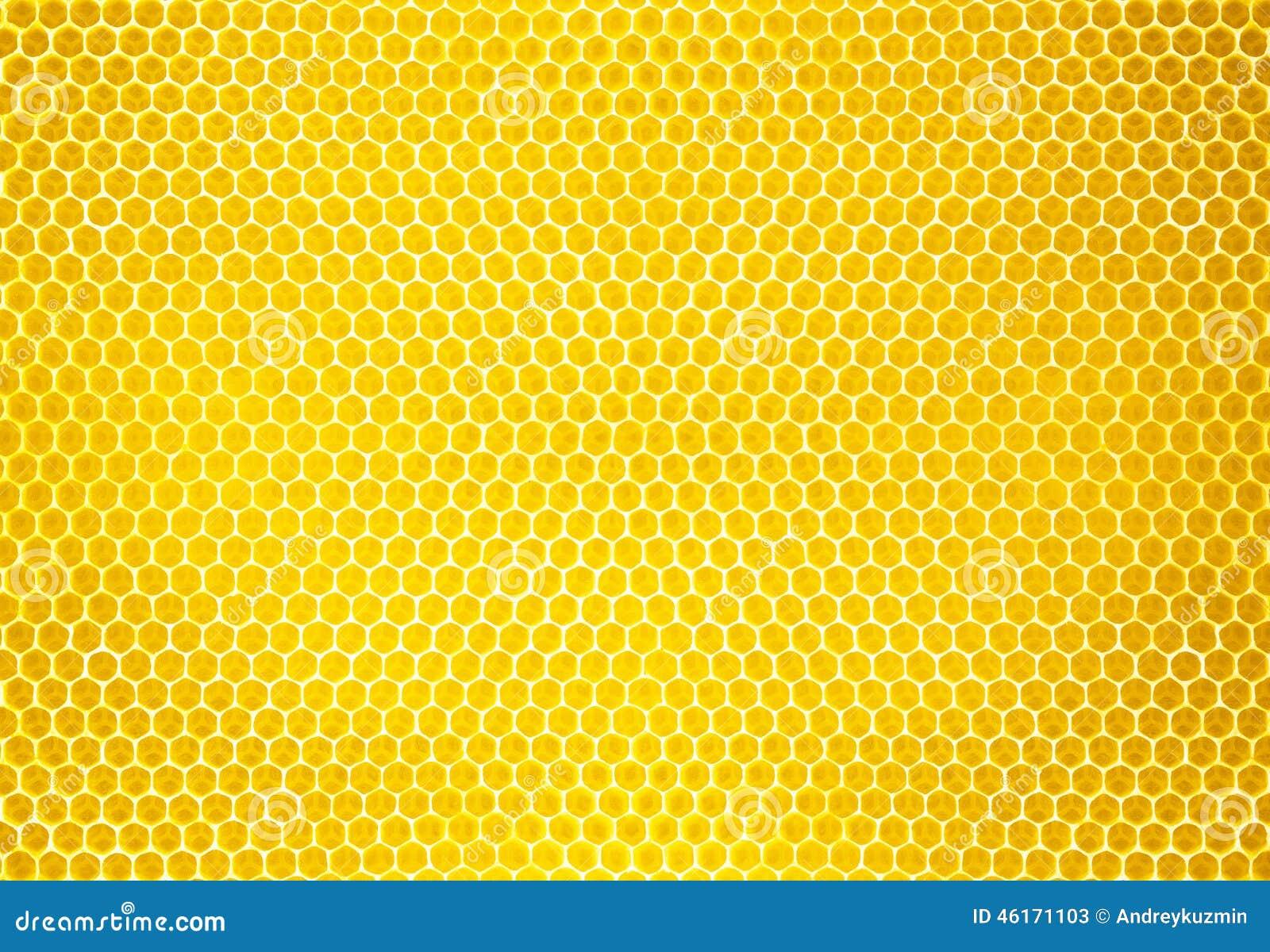 Fondo o textura natural del peine de la miel