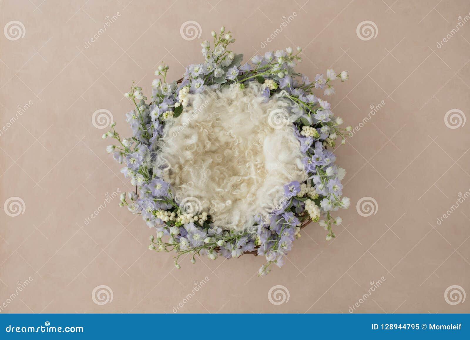 Fondo precioso para el bebé recién nacido, concepto de la flor de vagos recién nacidos