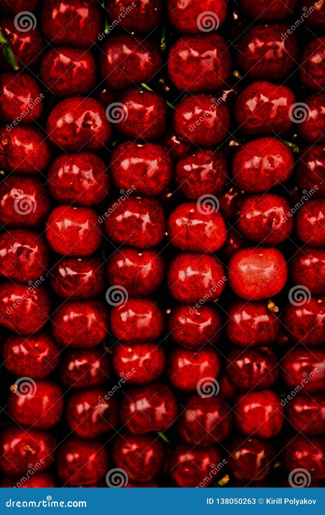 Fondo rosso luminoso dalle ciliegie succose ordinatamente piegate
