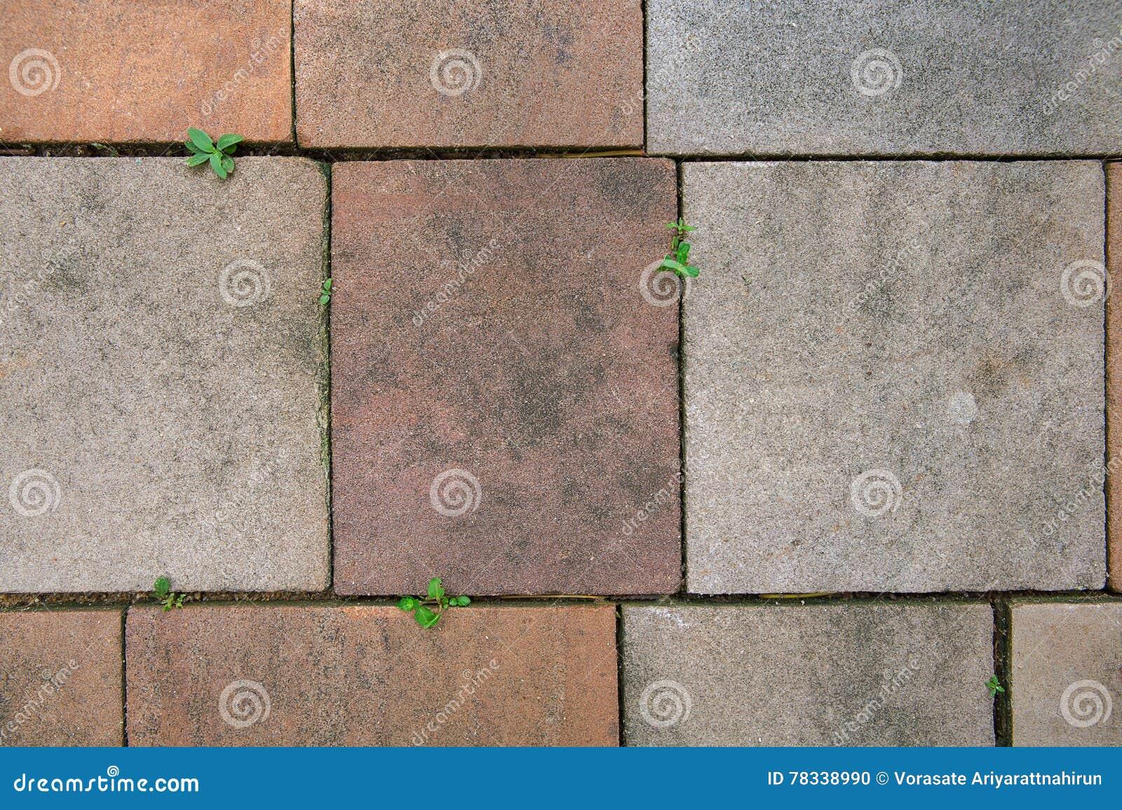 Fondo senza cuciture e struttura della piastrella per pavimento di