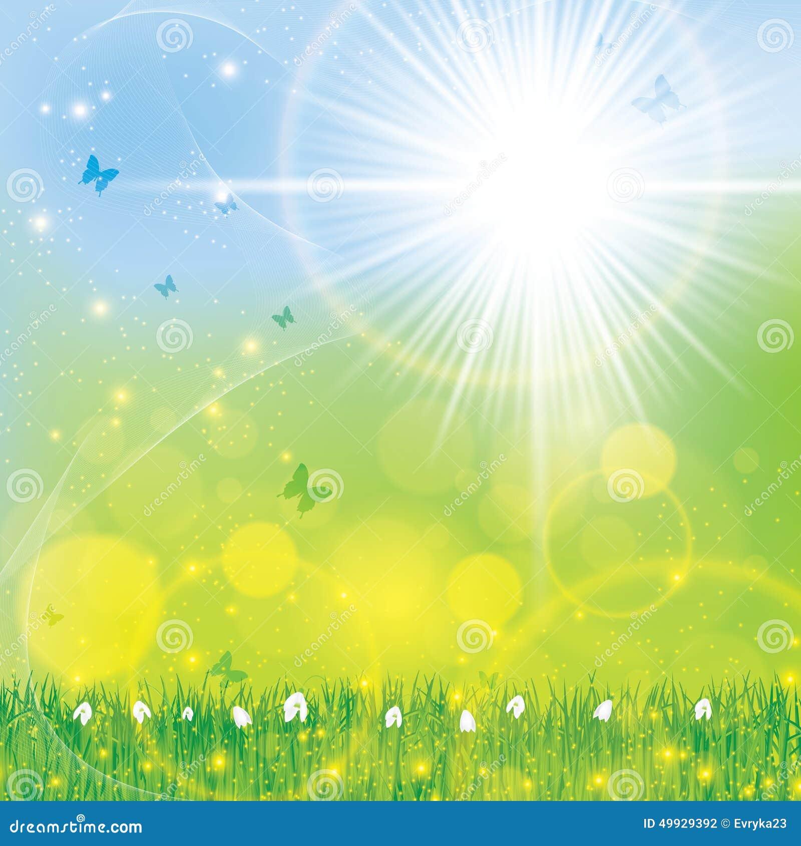 Fondo soleado brillante floral de la primavera abstracta