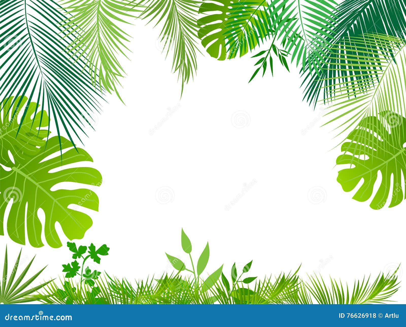 Fondo De Pantalla Selva: Fondo Tropical De La Selva Del Vector Ilustración Del