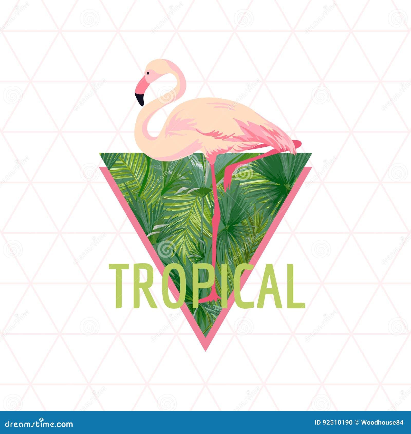 Fondo tropical del pájaro del flamenco Diseño del verano Gráfico de la moda de la camiseta exótico