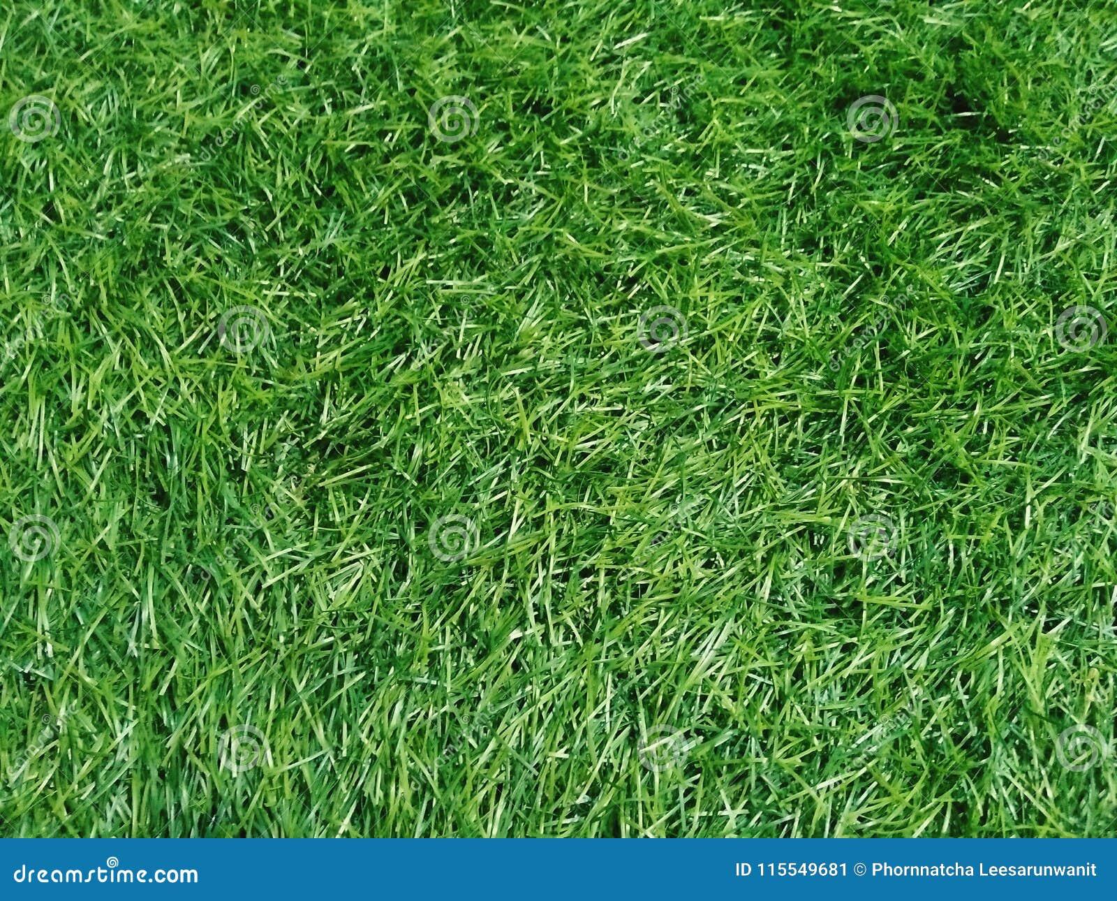 Fondo verde artificial de la hierba del fullframe