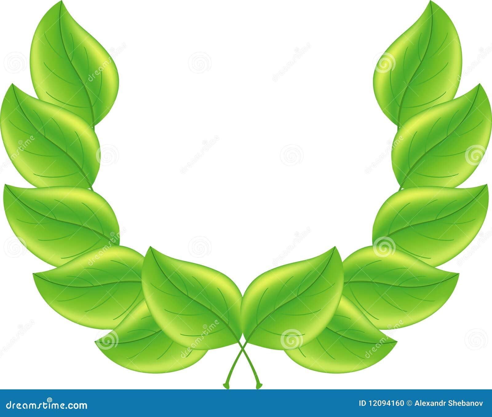 Fondo verde de la hoja