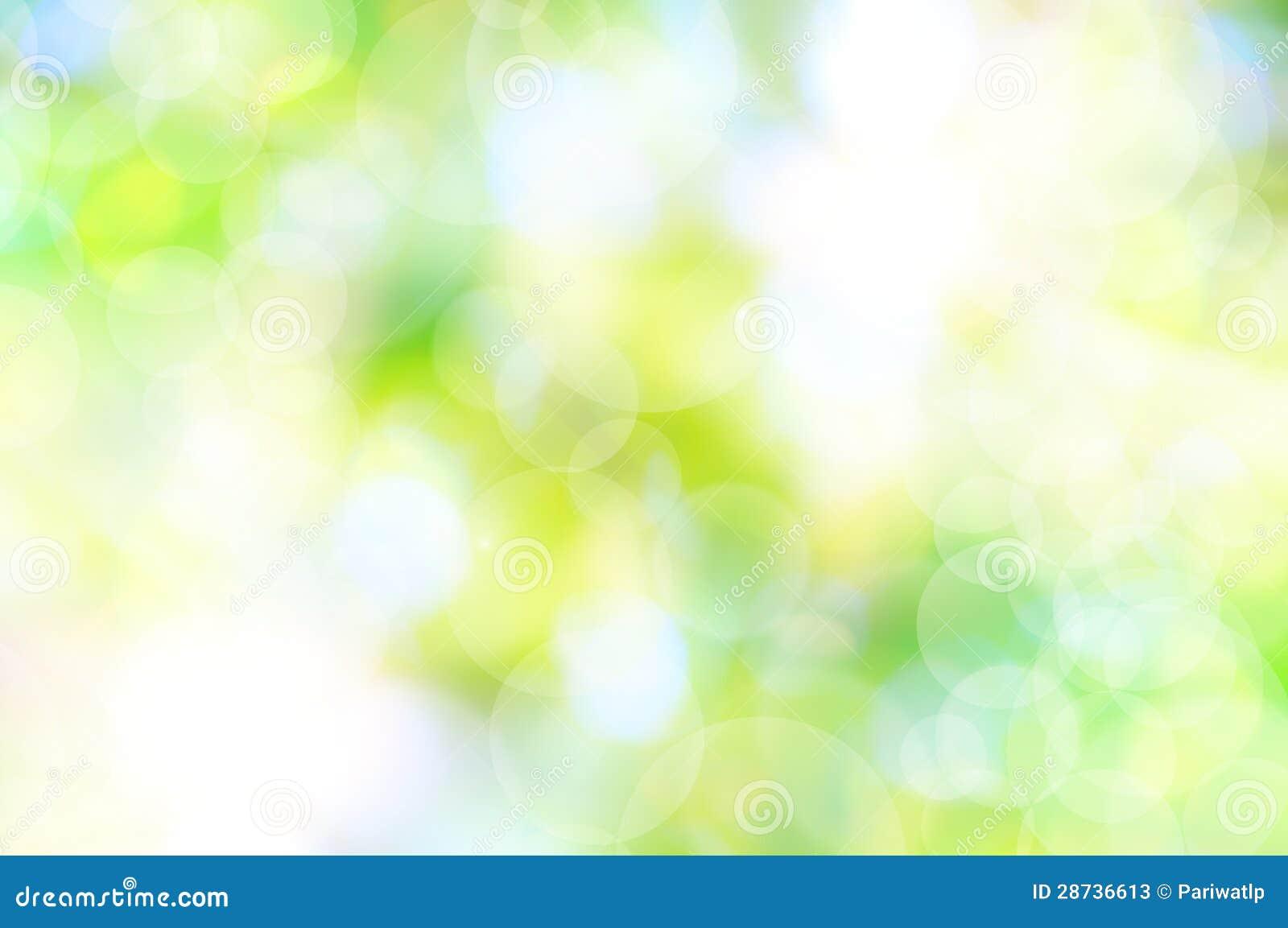 Fondo verde de la primavera