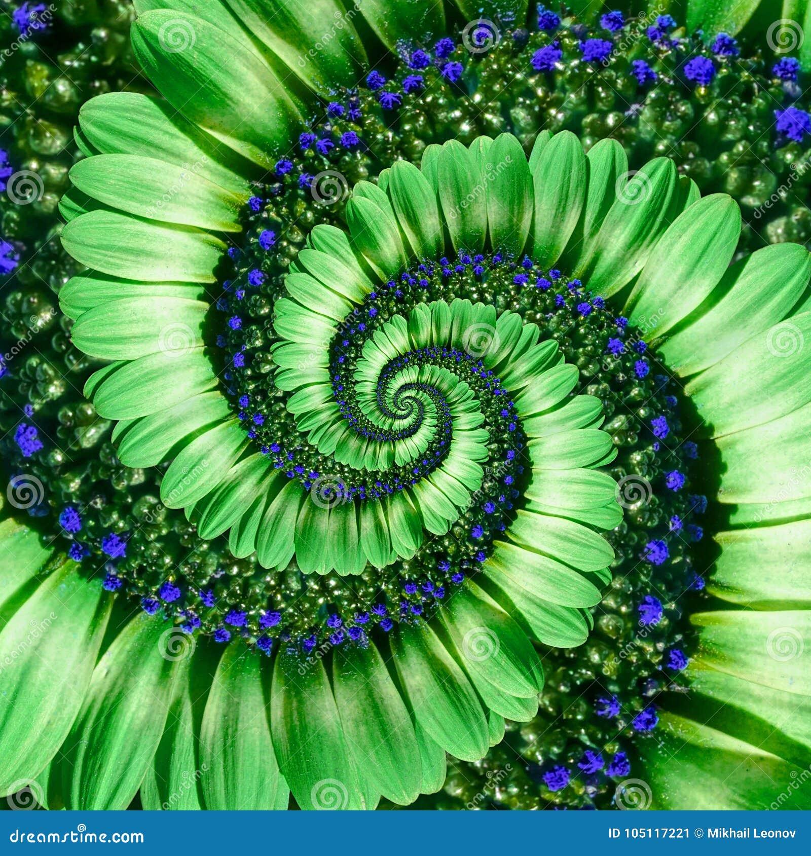Fondo verde del modelo del efecto del fractal del extracto del espiral de la flor de la margarita Fractal verde del modelo del ex