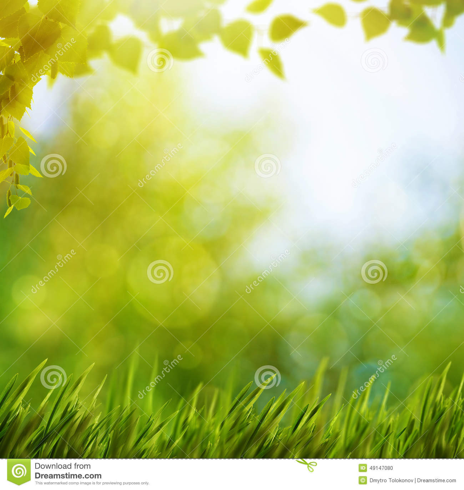 Fondos naturales abstractos con follaje del verano