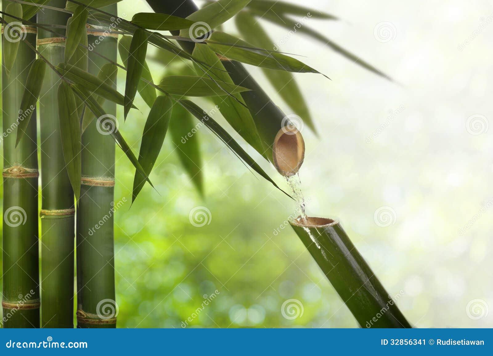 Fontaine en bambou de zen image stock image du jardin for Fontaine zen exterieure bambou