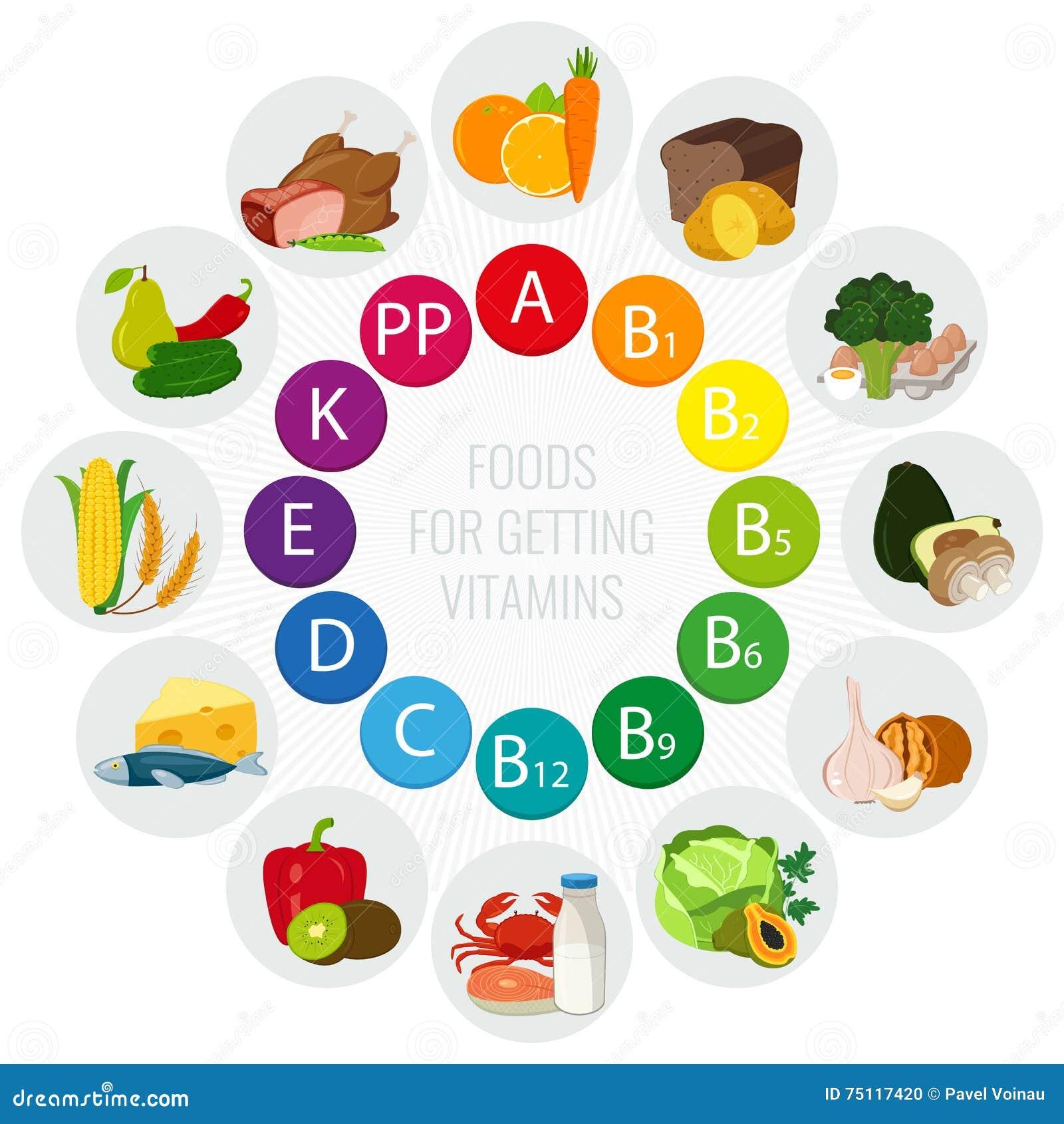 Fontes do alimento da vitamina Carta colorida da roda com ícones do alimento Conceito saudável comer e de cuidados médicos Vetor