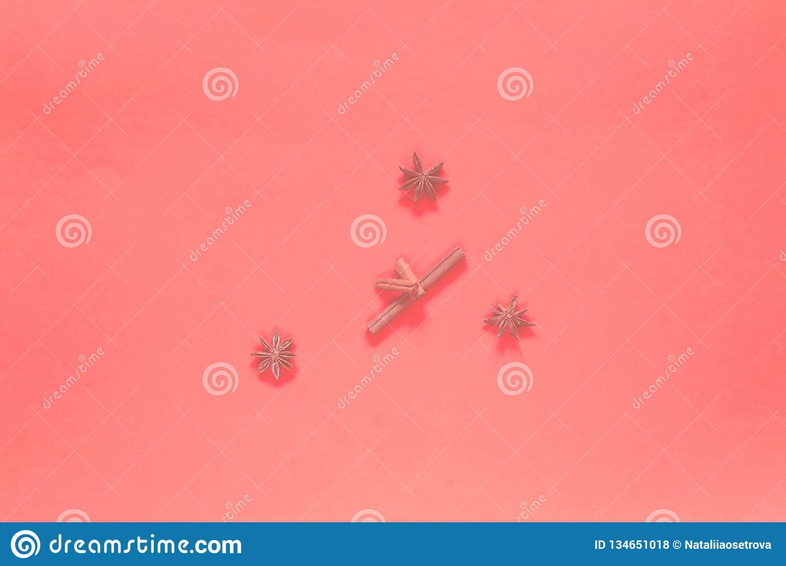 Food Foundation With Spices  Anise And Cinnamon On A Coral