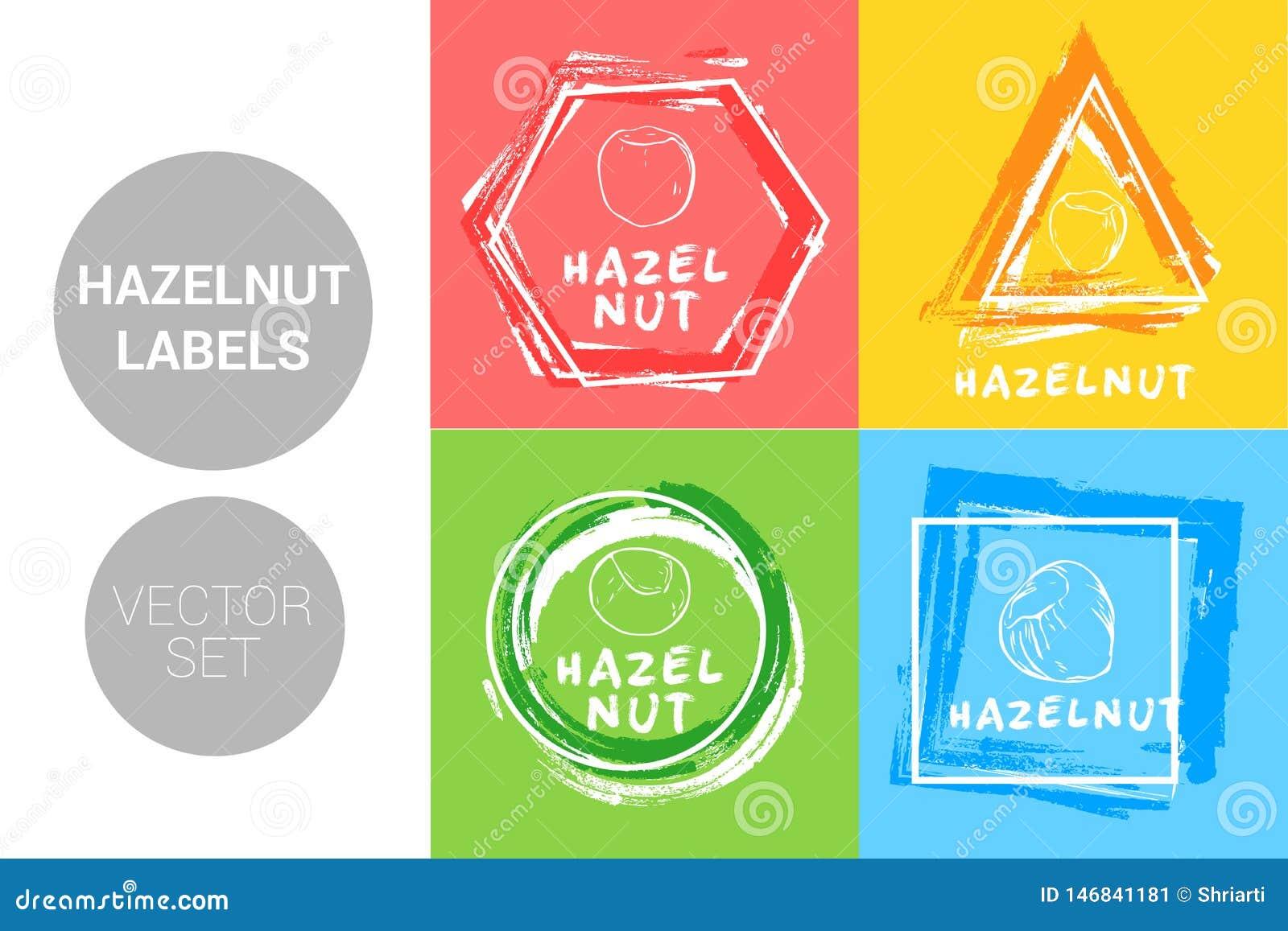 Hazelnut colorful label set. Raw organic nuts Badge shapes. Creative Nut tags.