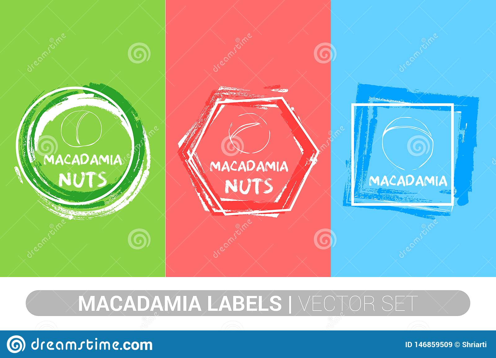 Macadamia nuts colorful label set. Raw organic nuts Badge shapes. Creative Nut tags.