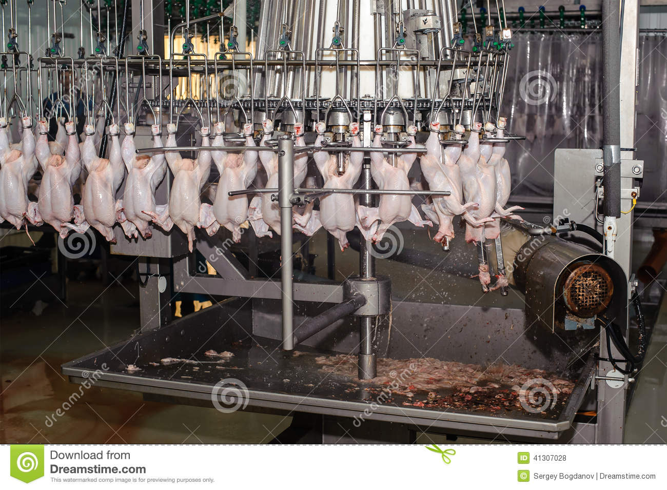 setting the guidelines for the meat packing industry in the united states Health and environmental experts are accusing the obama administration of caving to the meat industry in its new dietary guidelines while the guidelines recommend consuming less sugar, they do.
