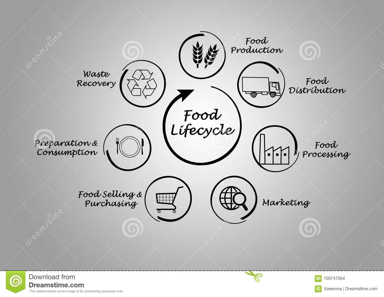 Food Lifecycle Stock Illustration Of Selling 100747054 Life Cycle Also Bald Eagle Diagram In Addition From Production To Waste Recovery