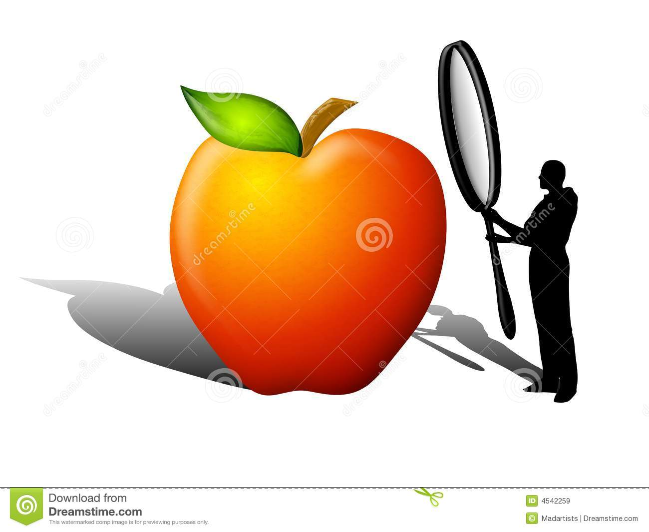 Food Quality Safety Inspection Royalty Free Stock Images