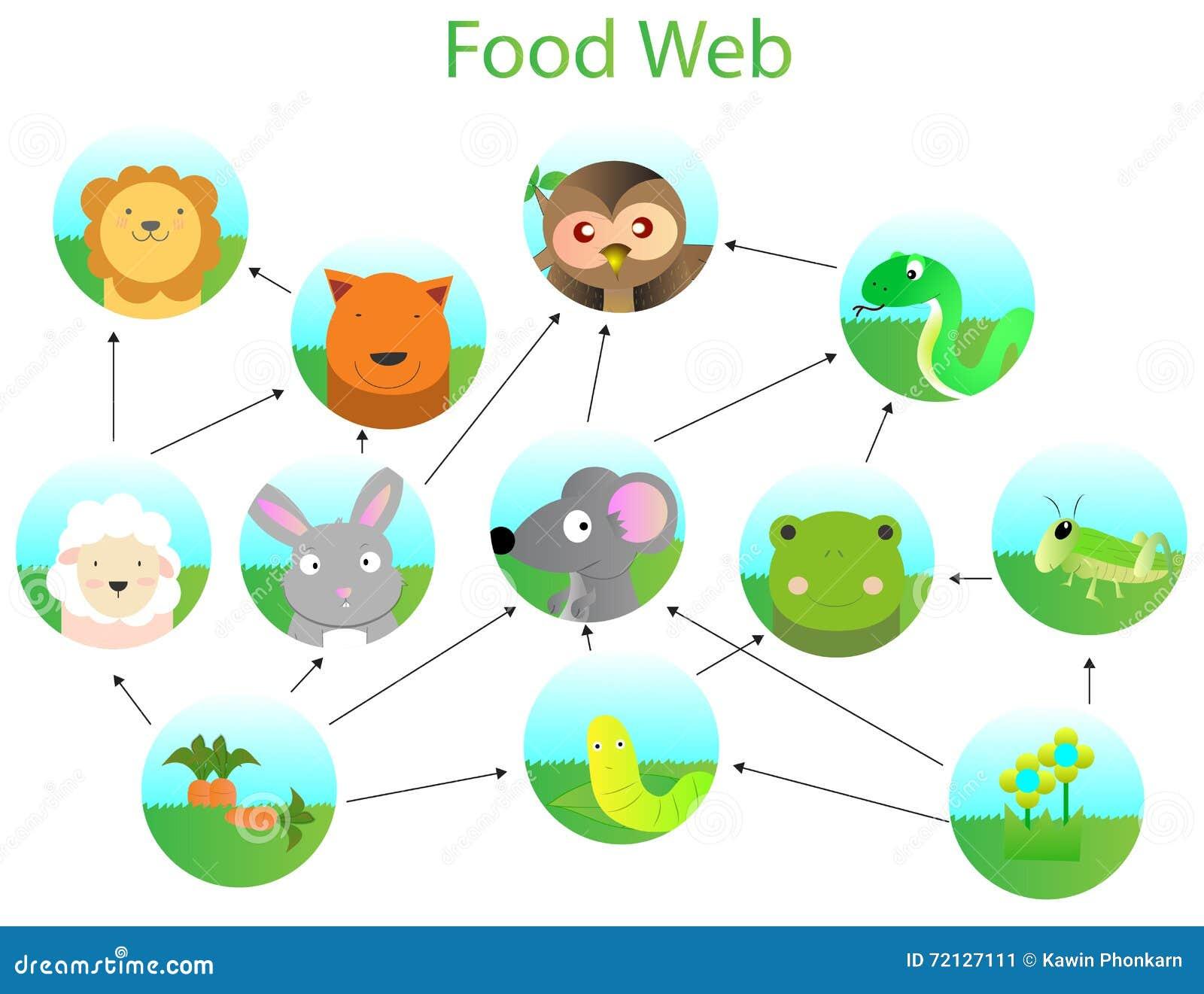 food web clipart � clipart download