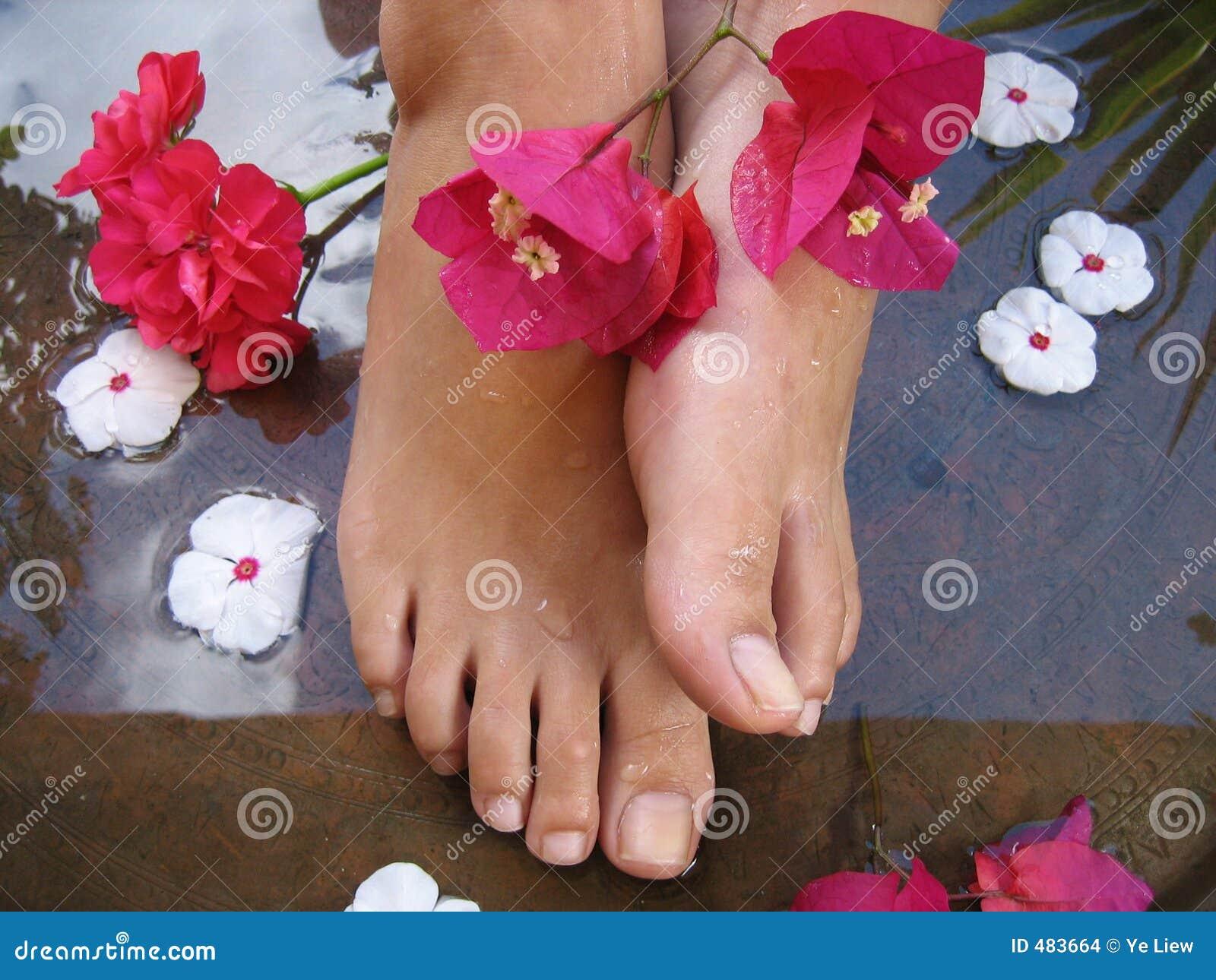 Фото женские пальцы ног 24 фотография