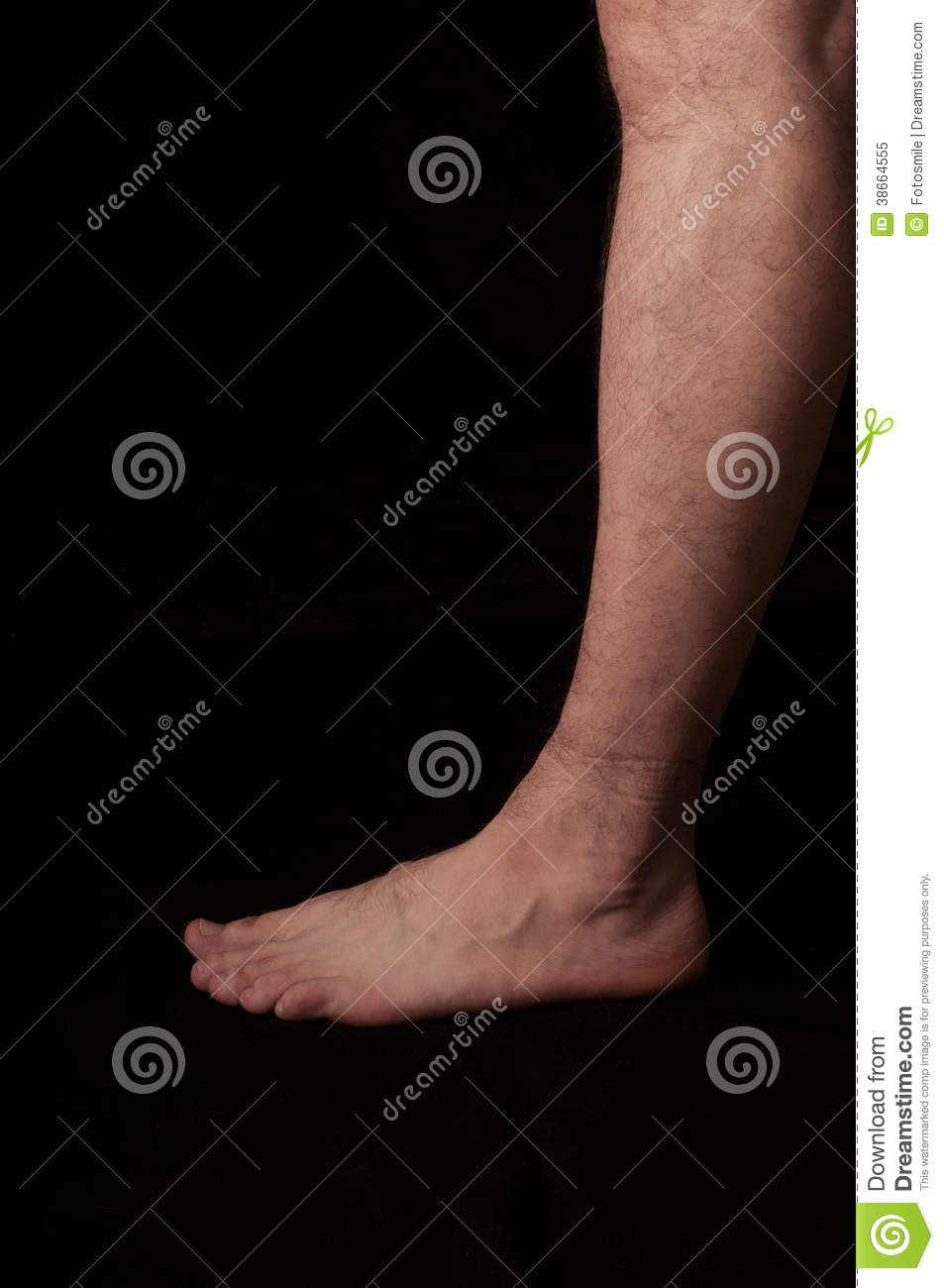 Foot Stock Image Image Of Left Palpatory Muscles Caucasian