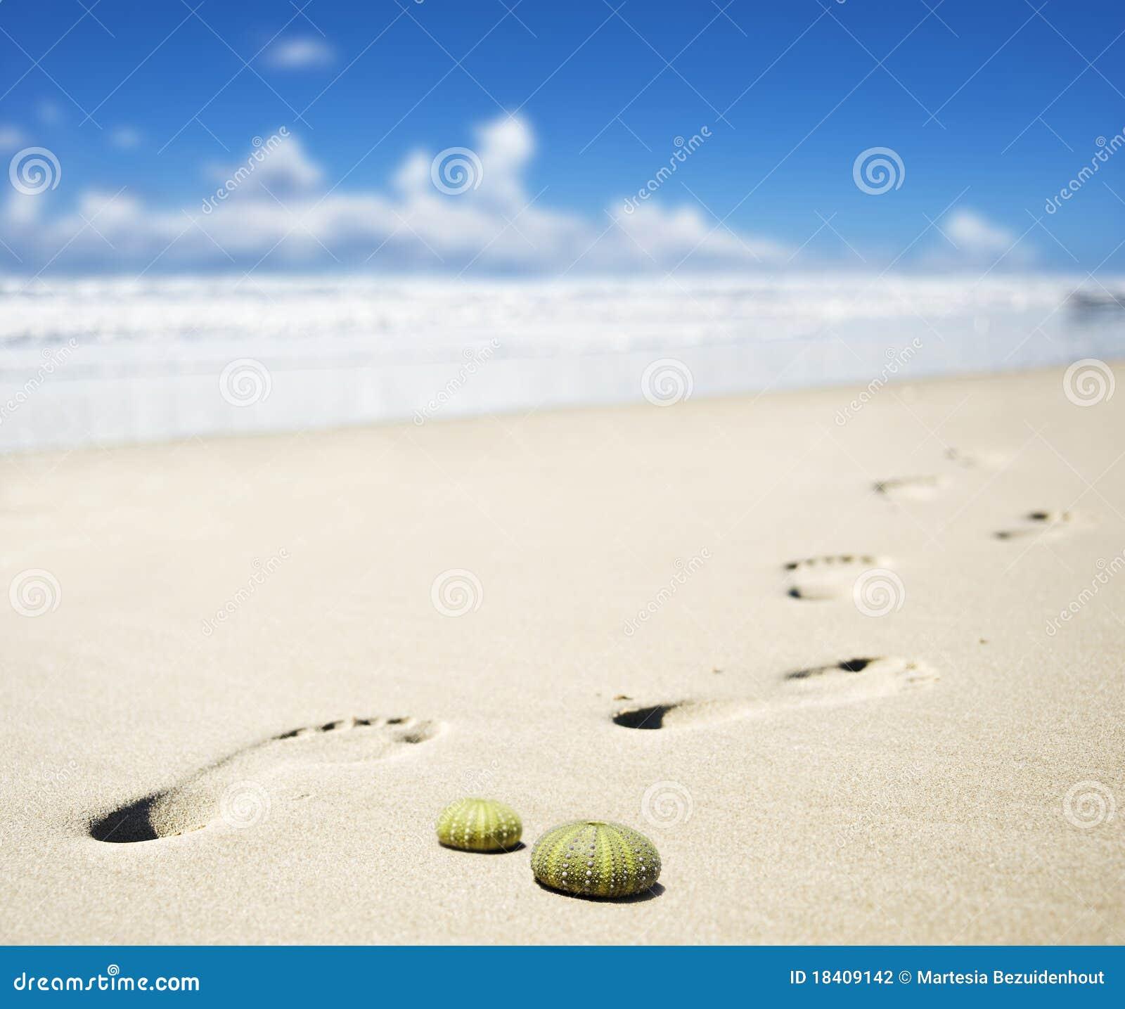 Sandy Beach: Foot Prints On A Sandy Beach Stock Photography