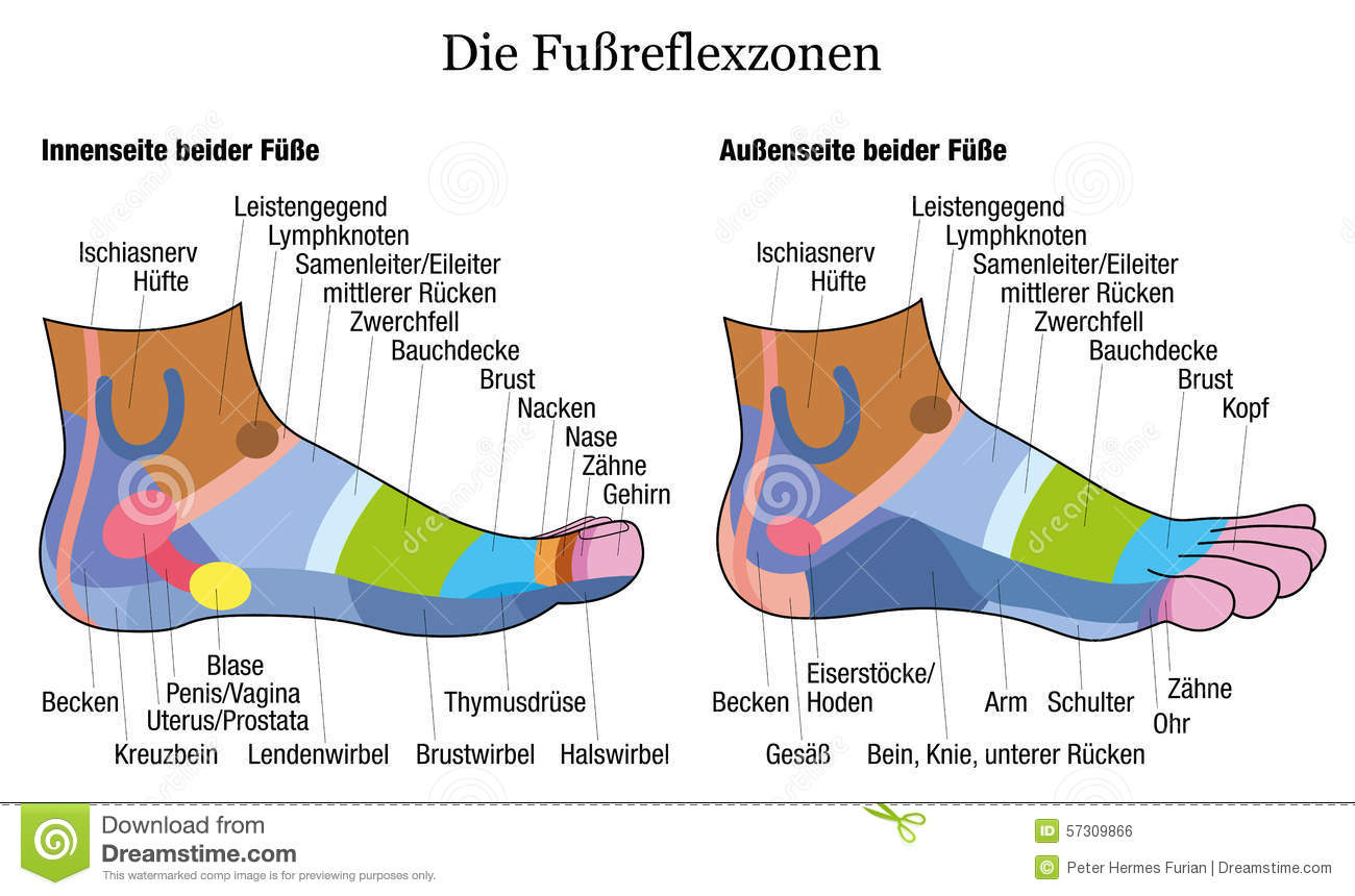 Foot Reflexology Business Plan