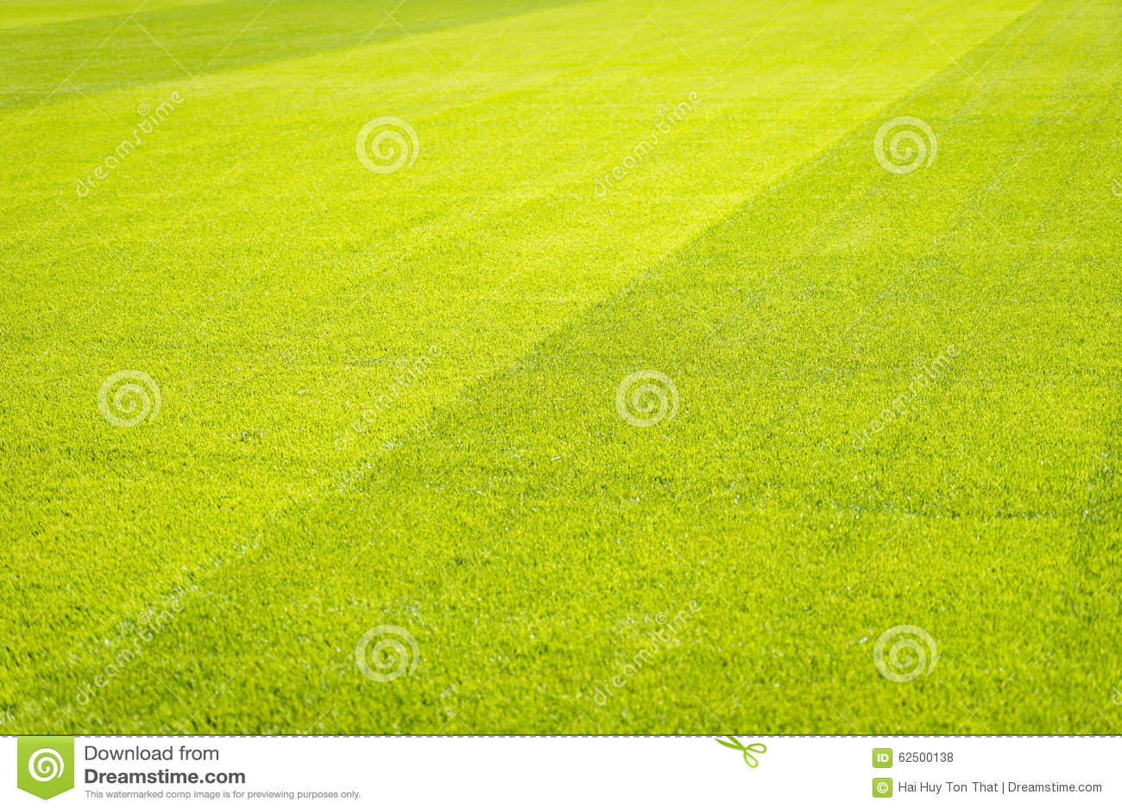 Seamless Vinyl Photography Backdrop Football Stadium Match: Football Field Background Stock Photo. Image Of Football