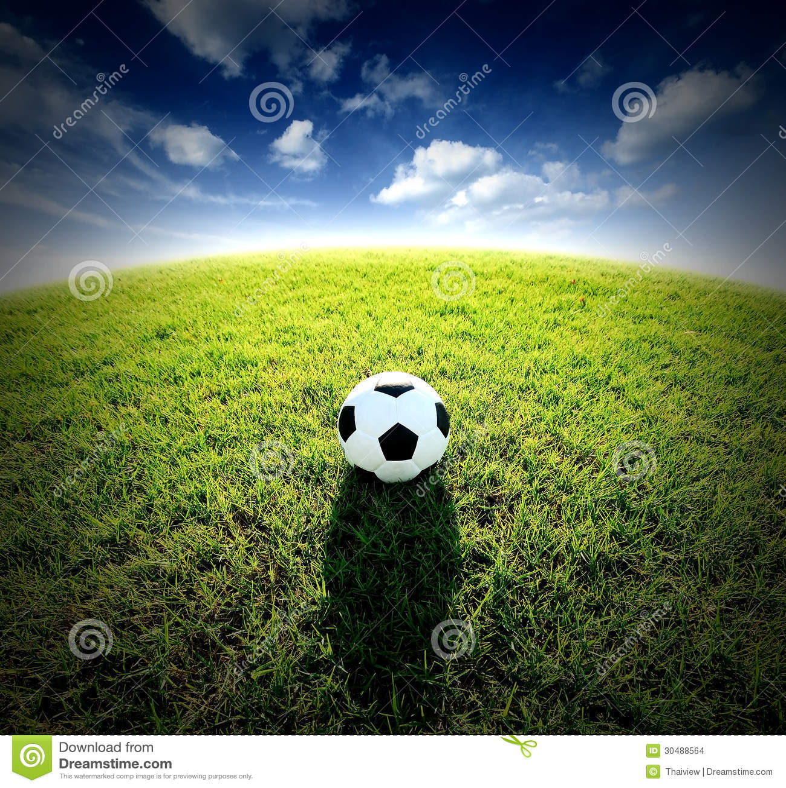 Stadium And Soccer Football On Green Grass Field Royalty ...