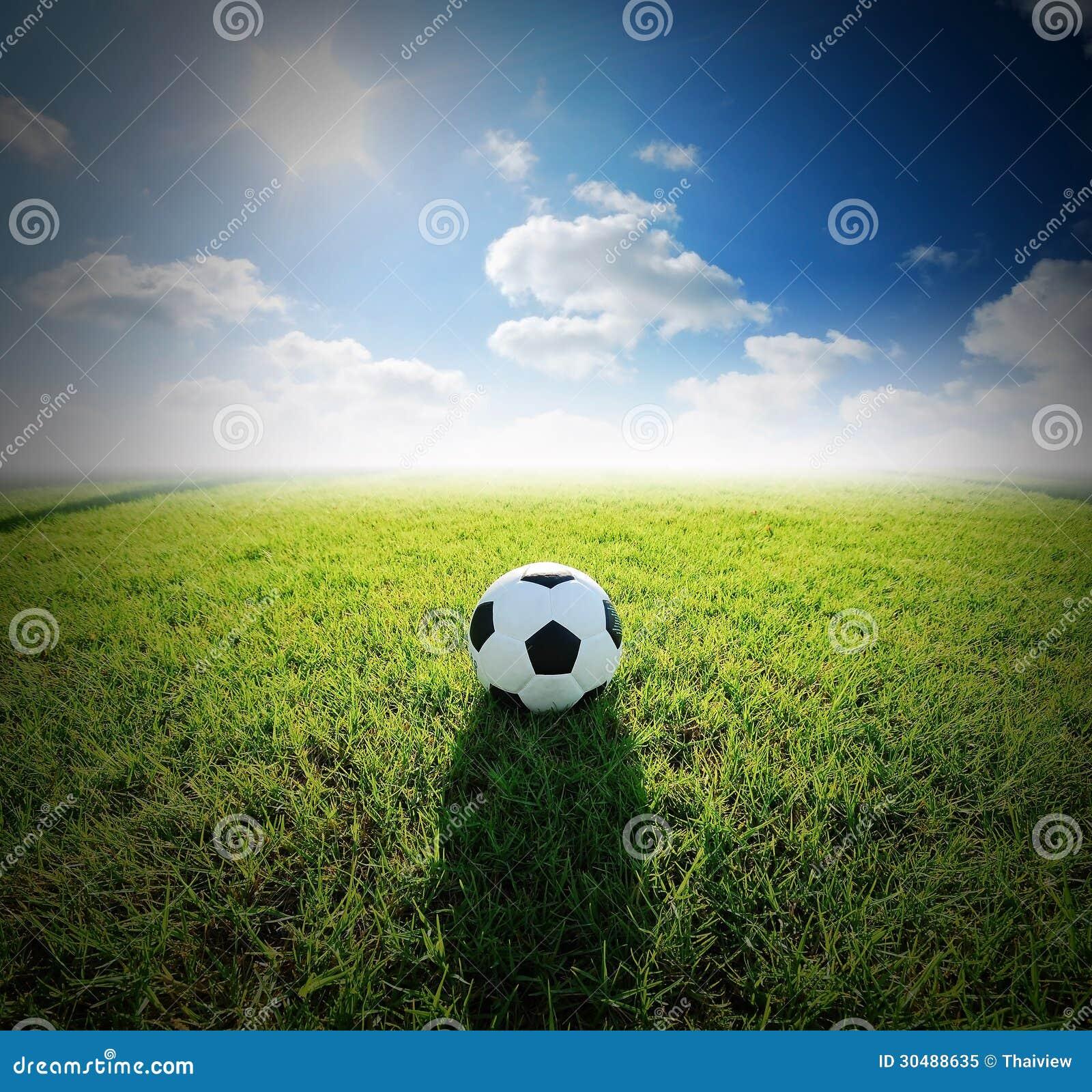 Football Field Soccer Stadium On The Green Grass Blue Sky ...