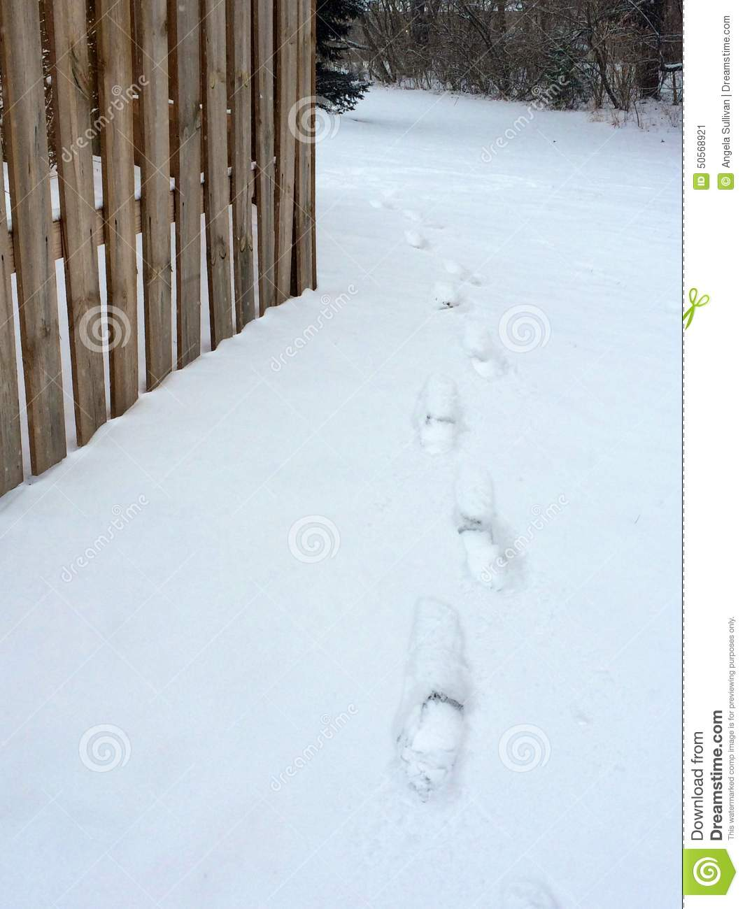 footprints in heavy snow next to fence stock image image 50568921